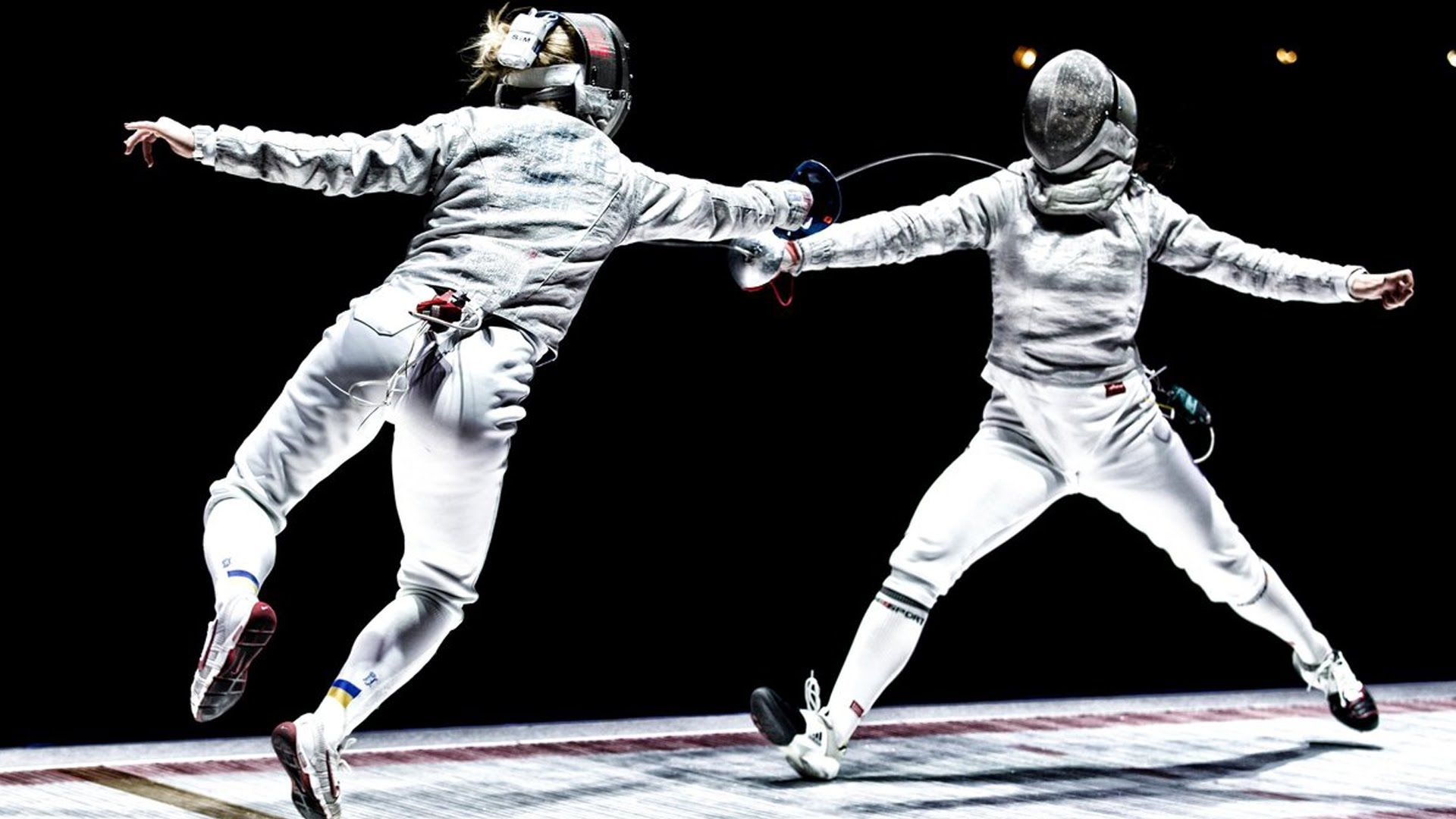 Fencing picture
