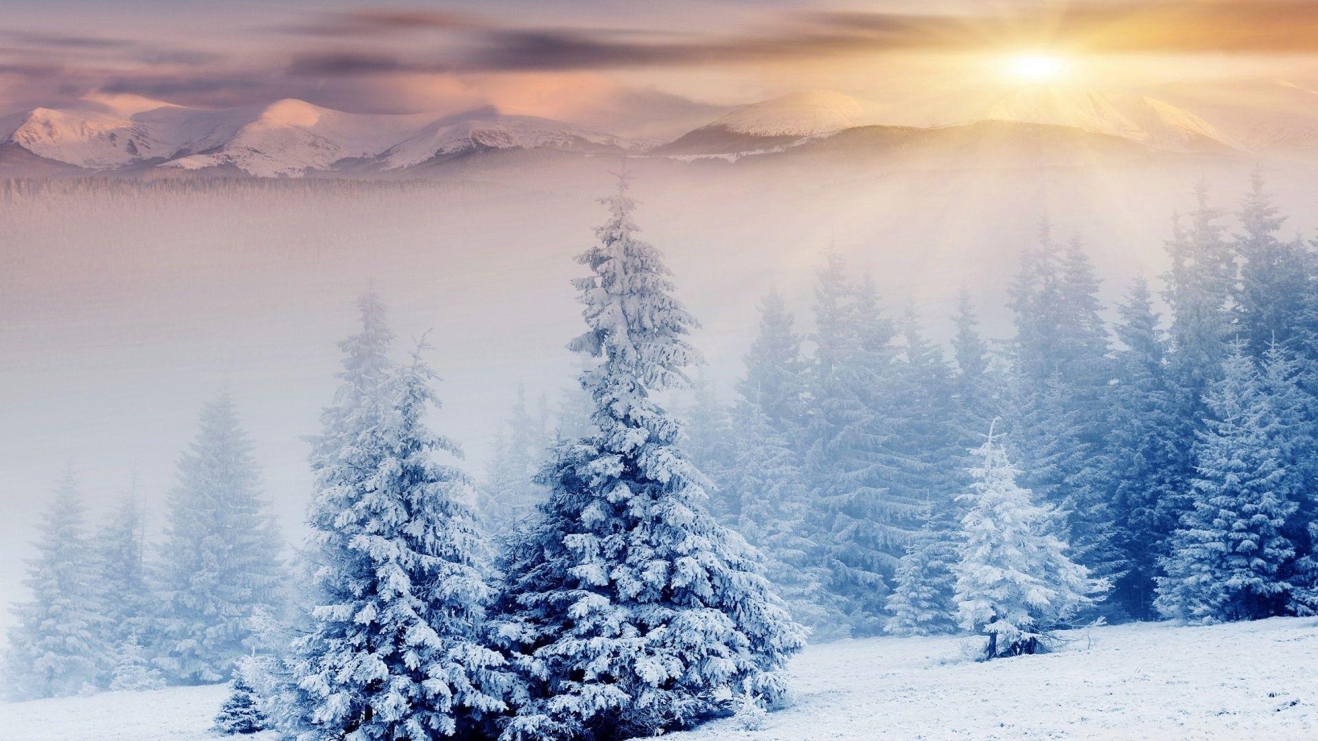 Free Winter 1080p