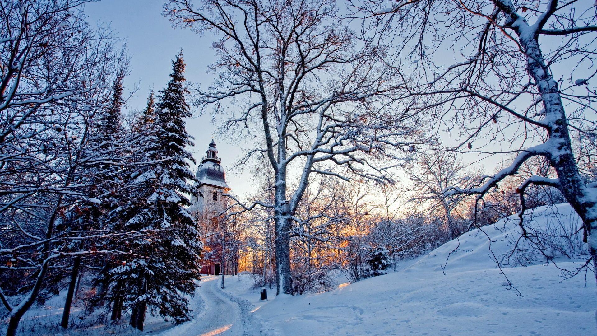 Free Winter background image