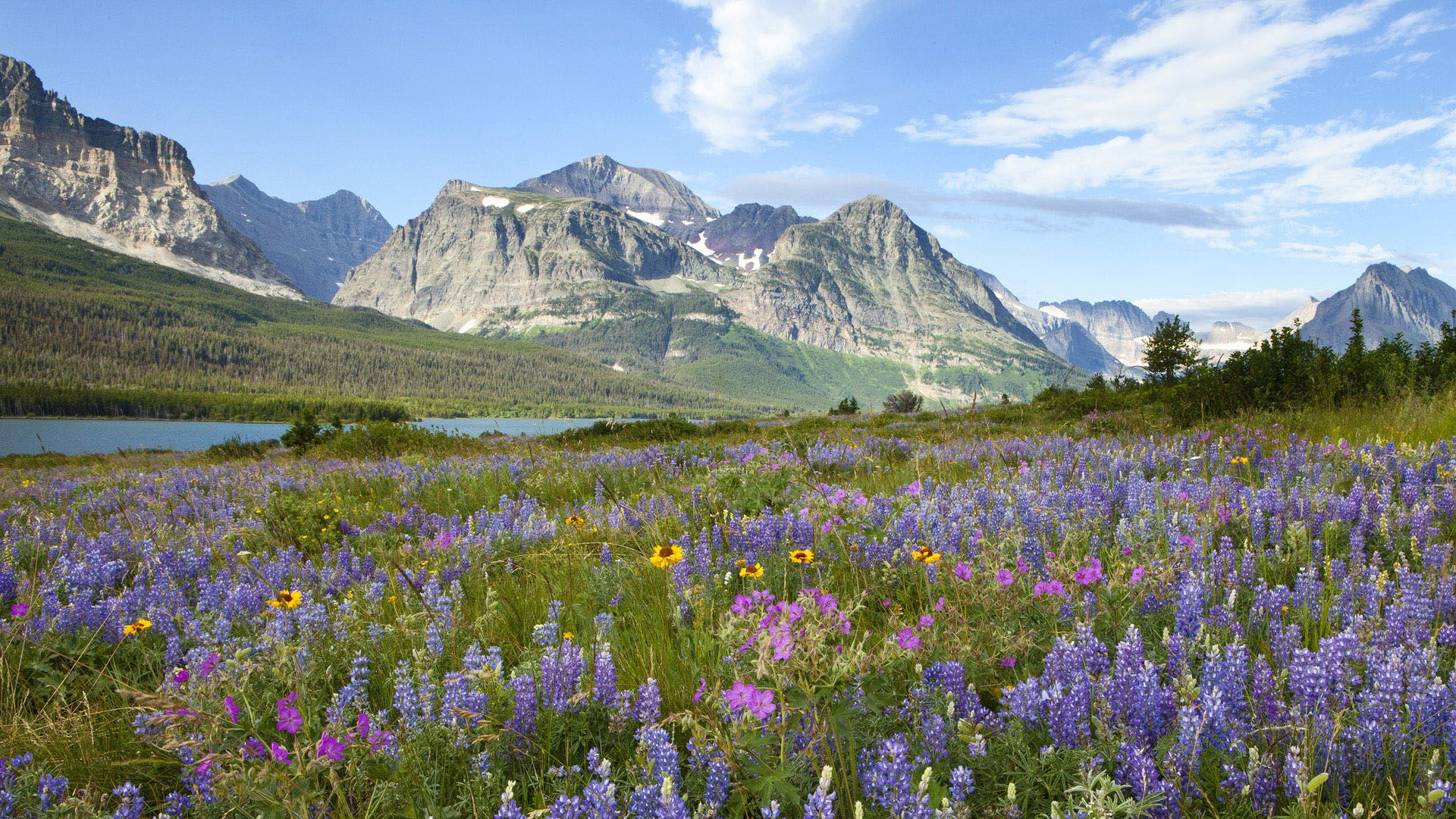 Glacier National Park hd image