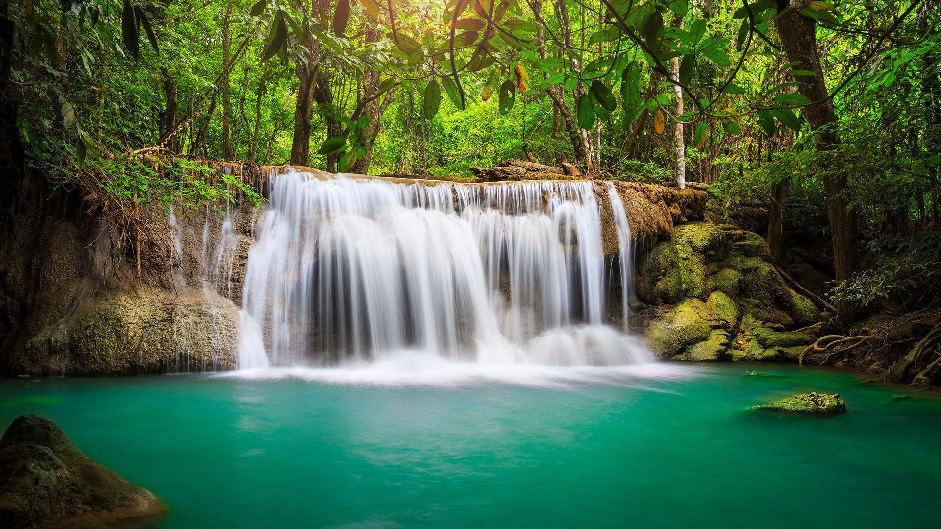 Nature Photo Hd desktop image