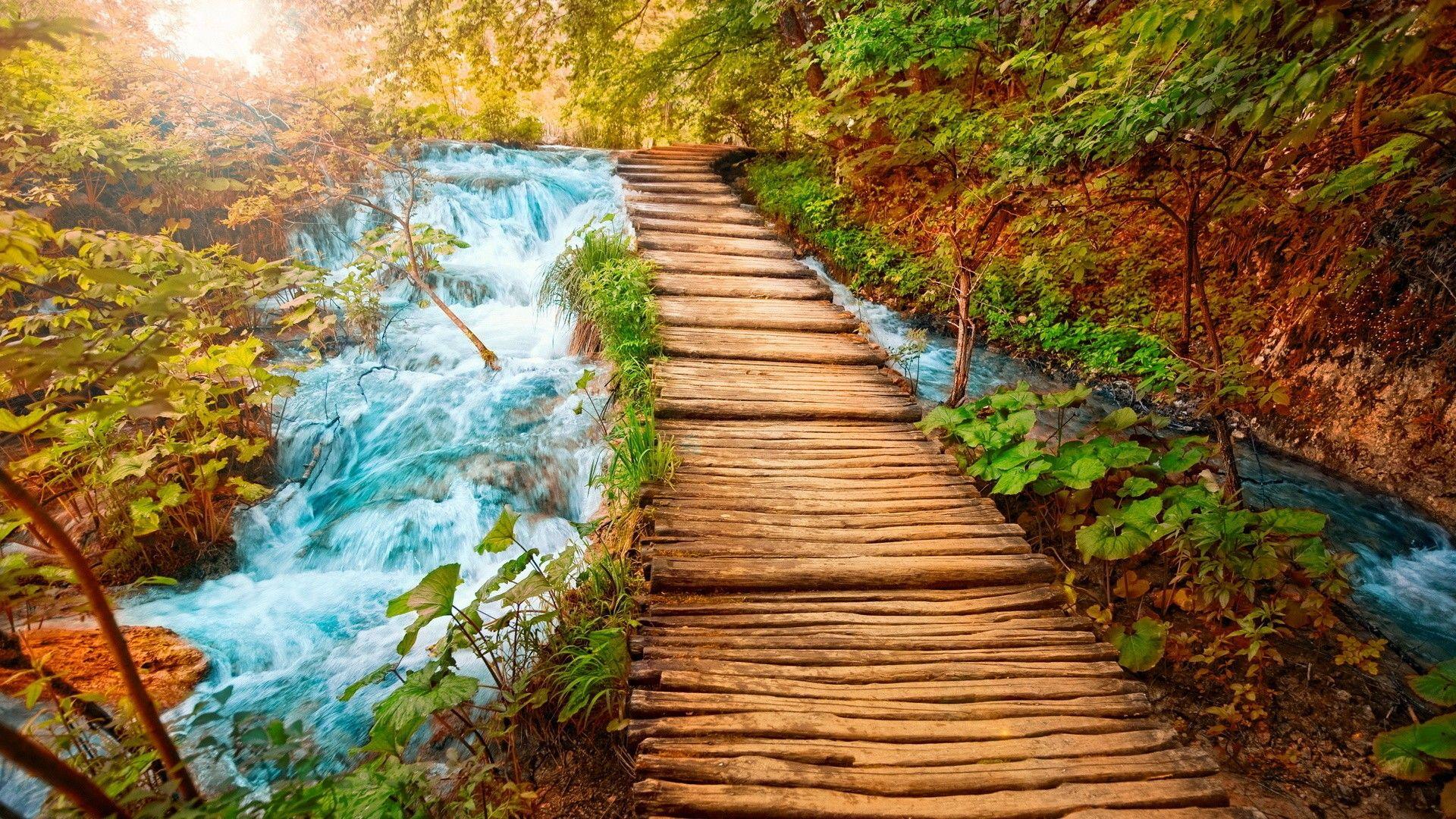 Nature Photo Hd wallpaper background