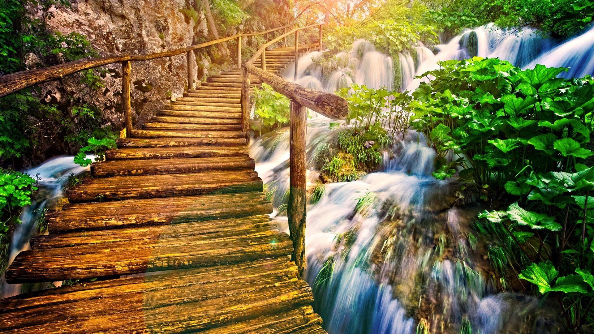 Nature Photo Hd