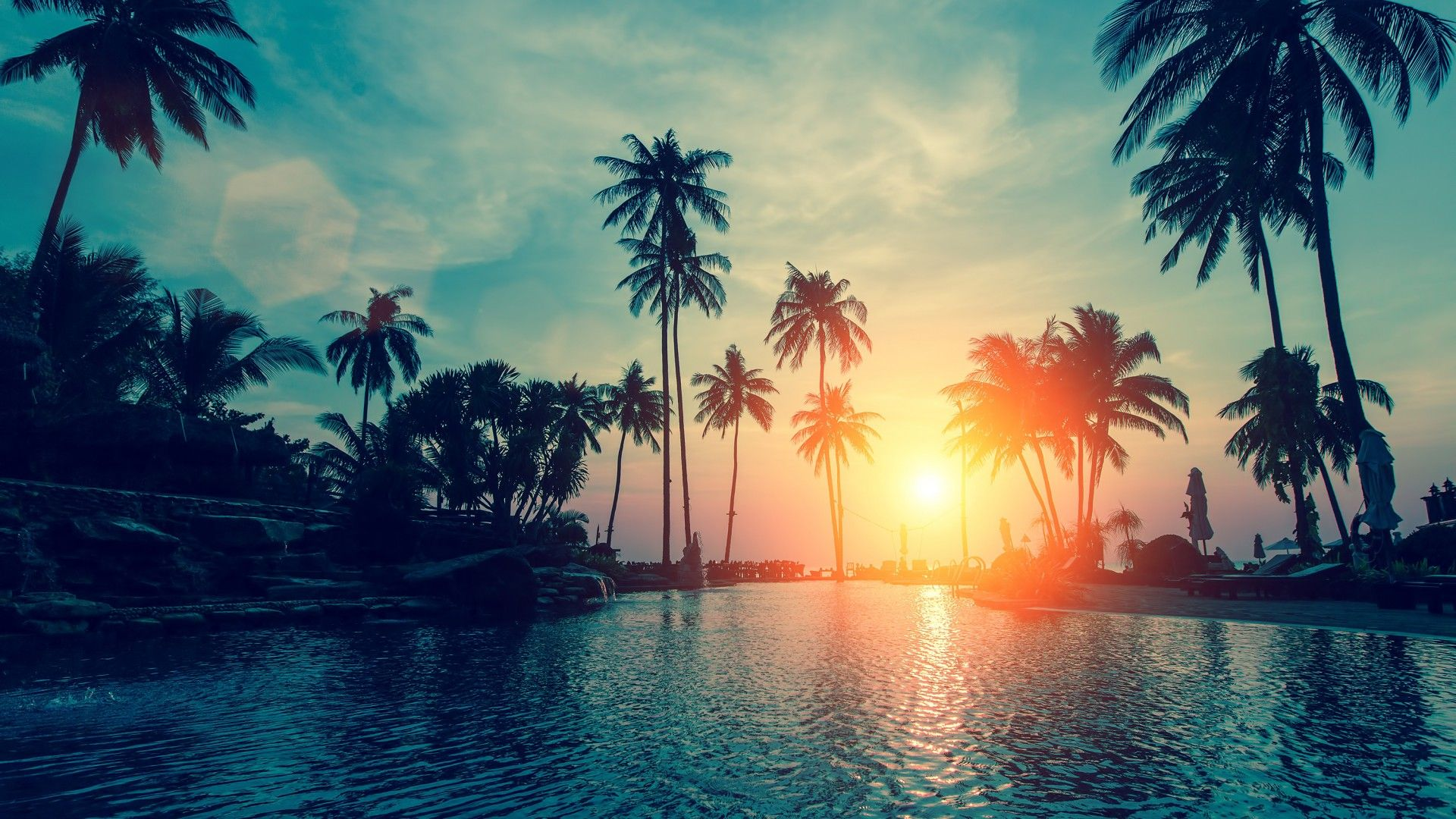 Palm Tree Sunset 1080p