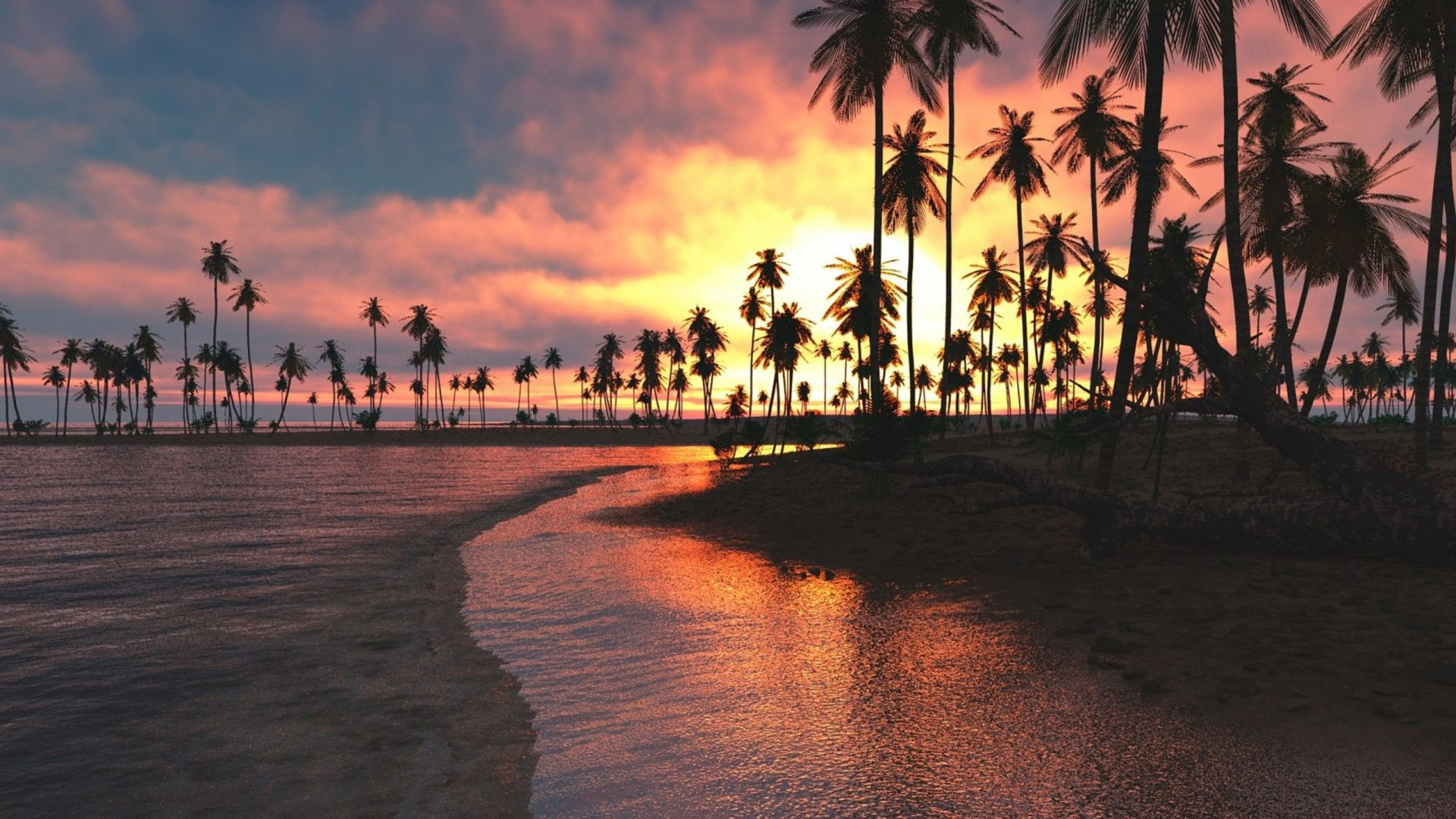 Palm Tree Sunset desktop