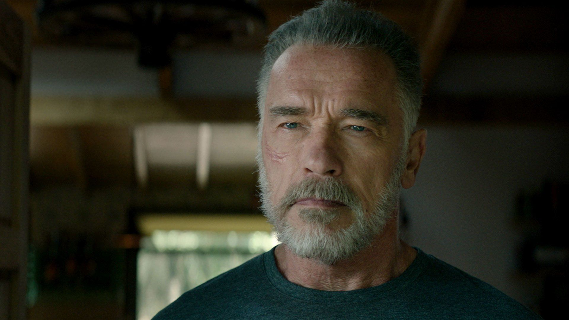 Terminator Dark Destiny Schwarzenegger