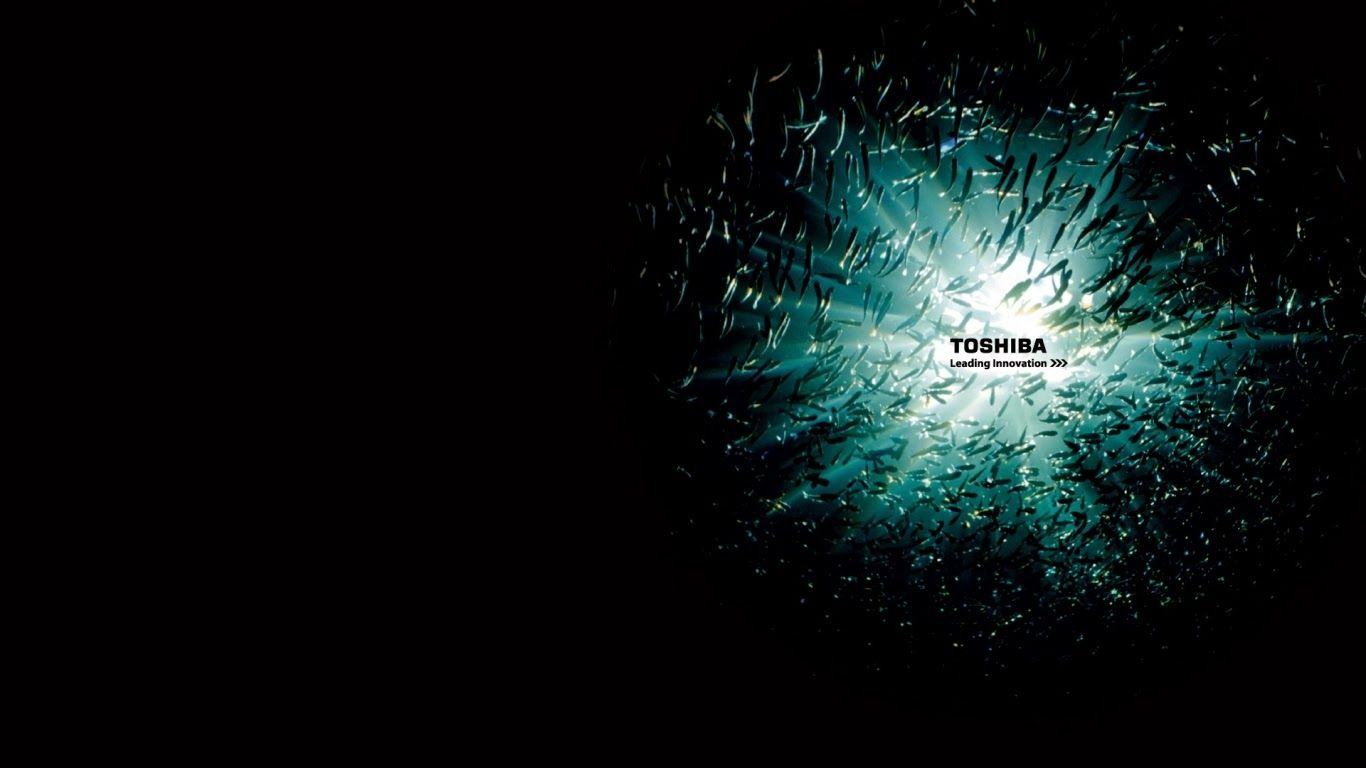 Toshiba Satellite 1280 Wallpaper