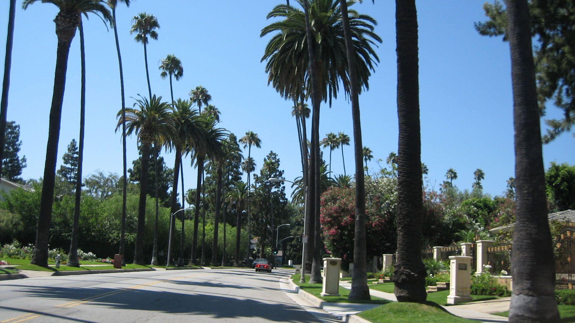 Beverly Hills Background