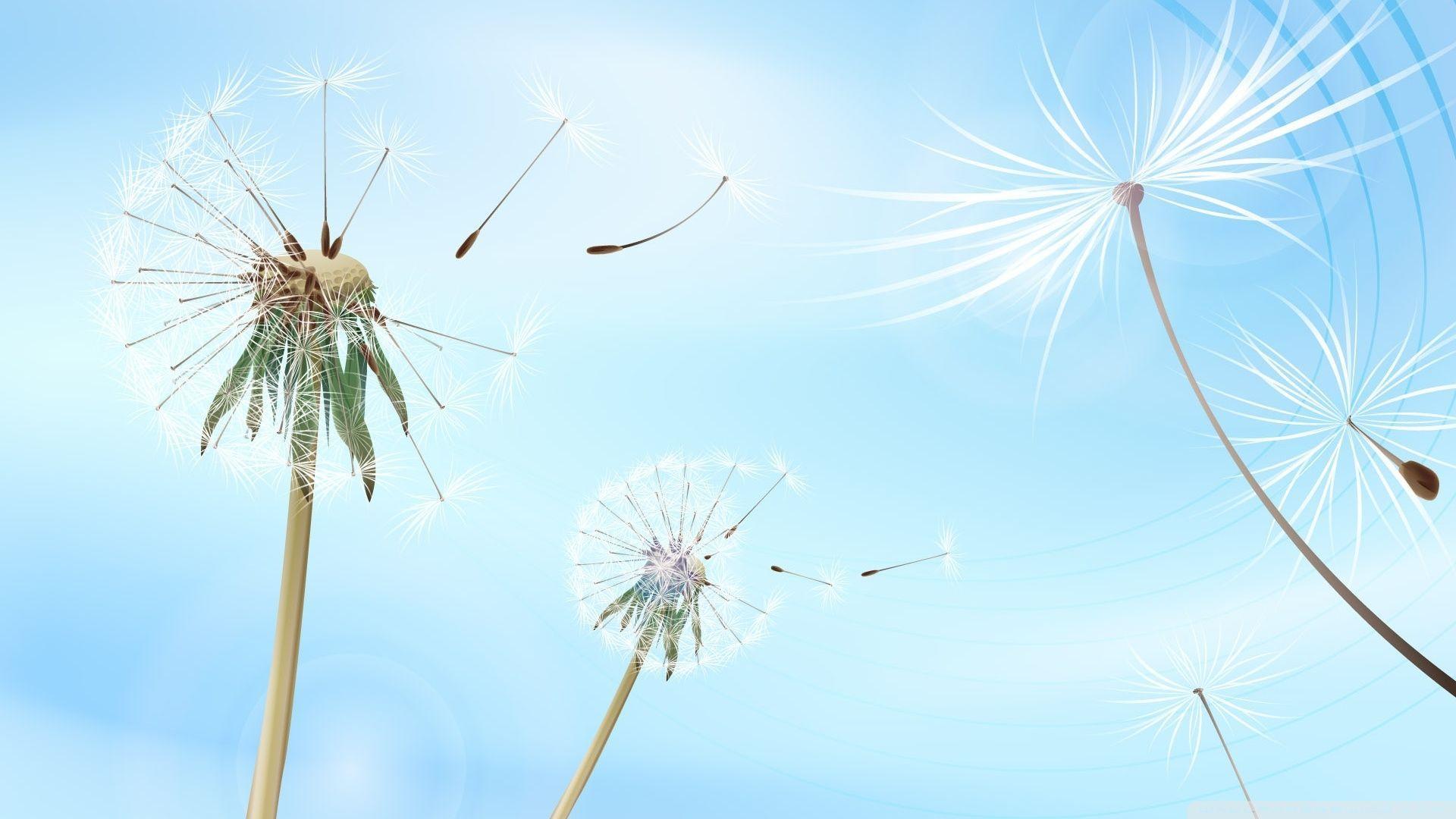 Dandelion wallpaper theme