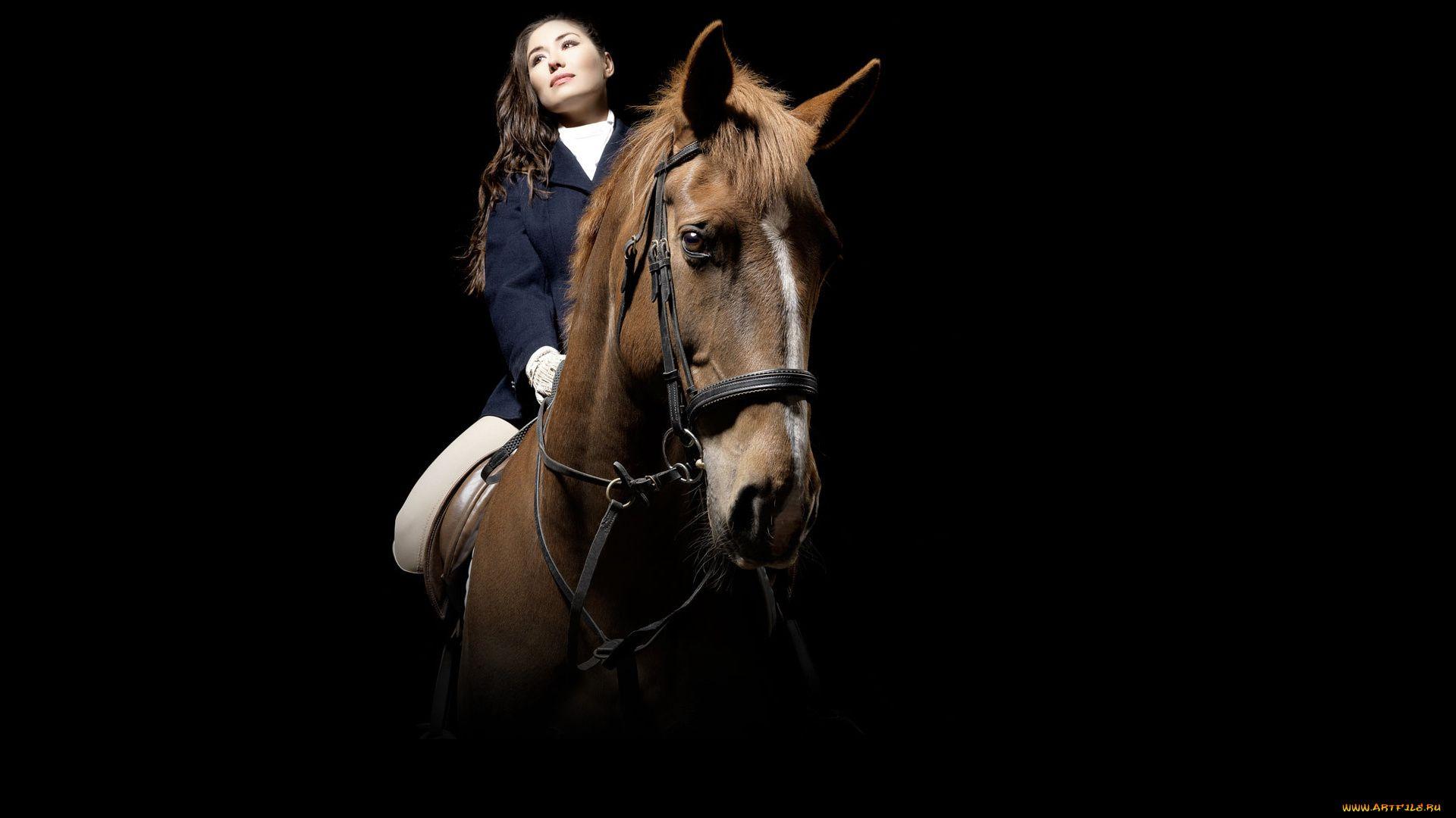 Equestrian free download wallpaper