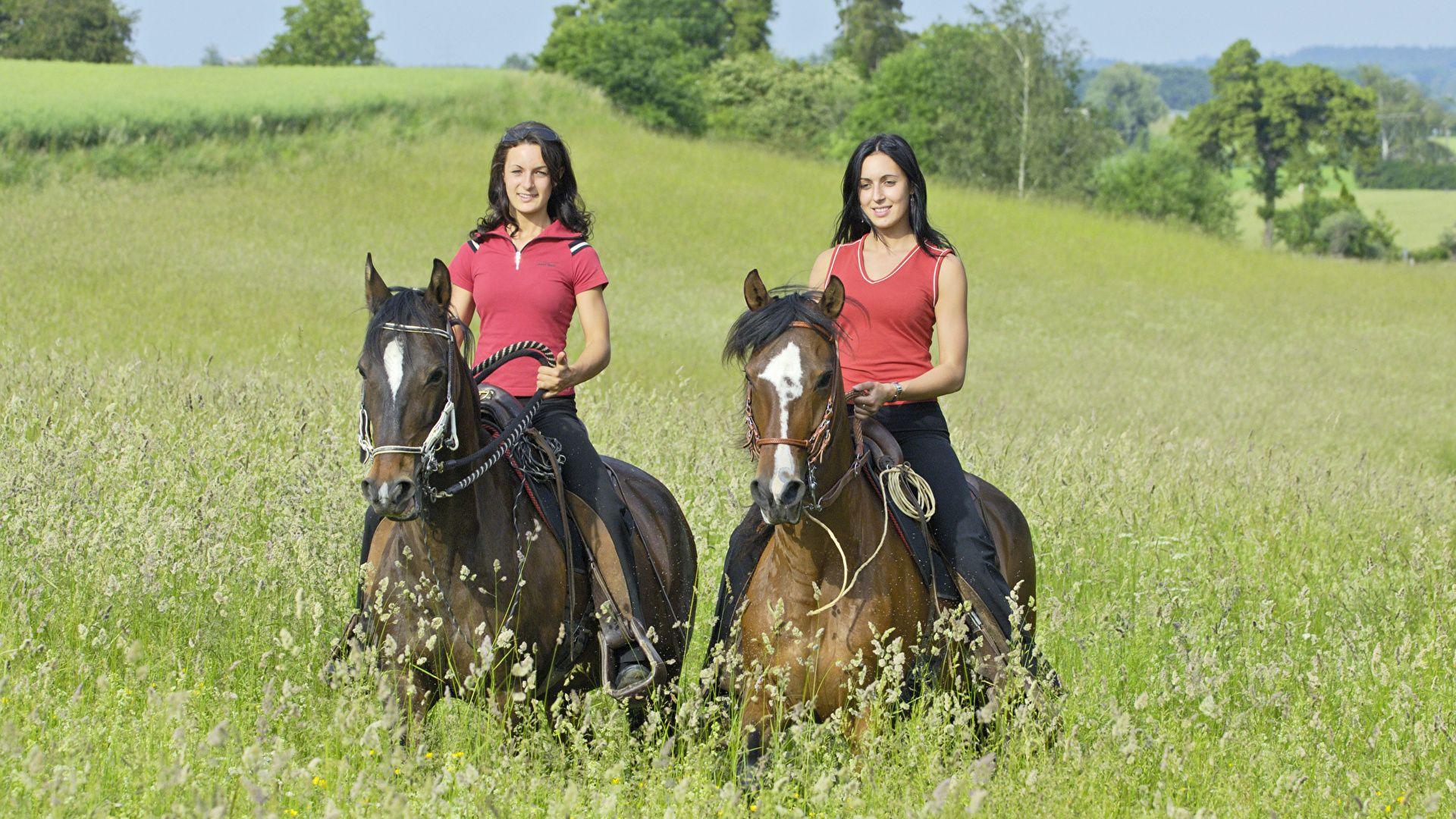 Equestrian full hd wallpaper for laptop
