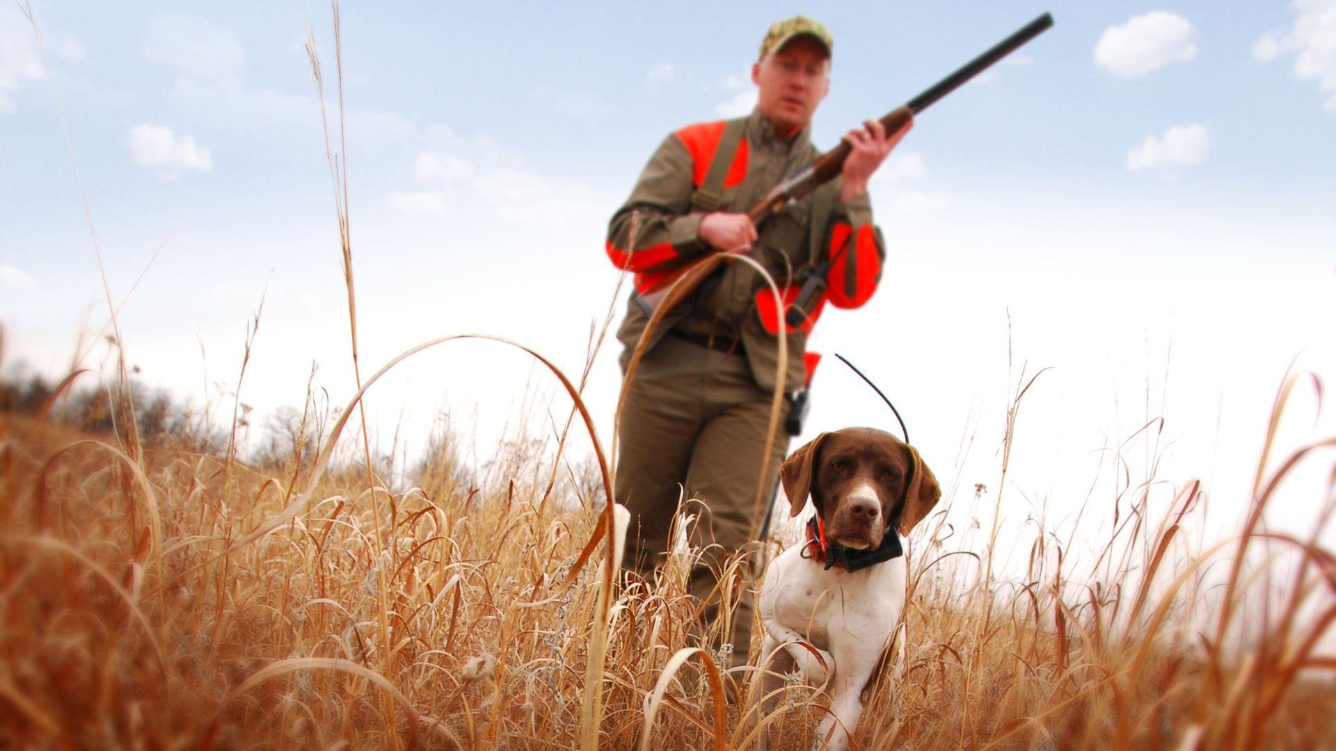 Hunting HD Download