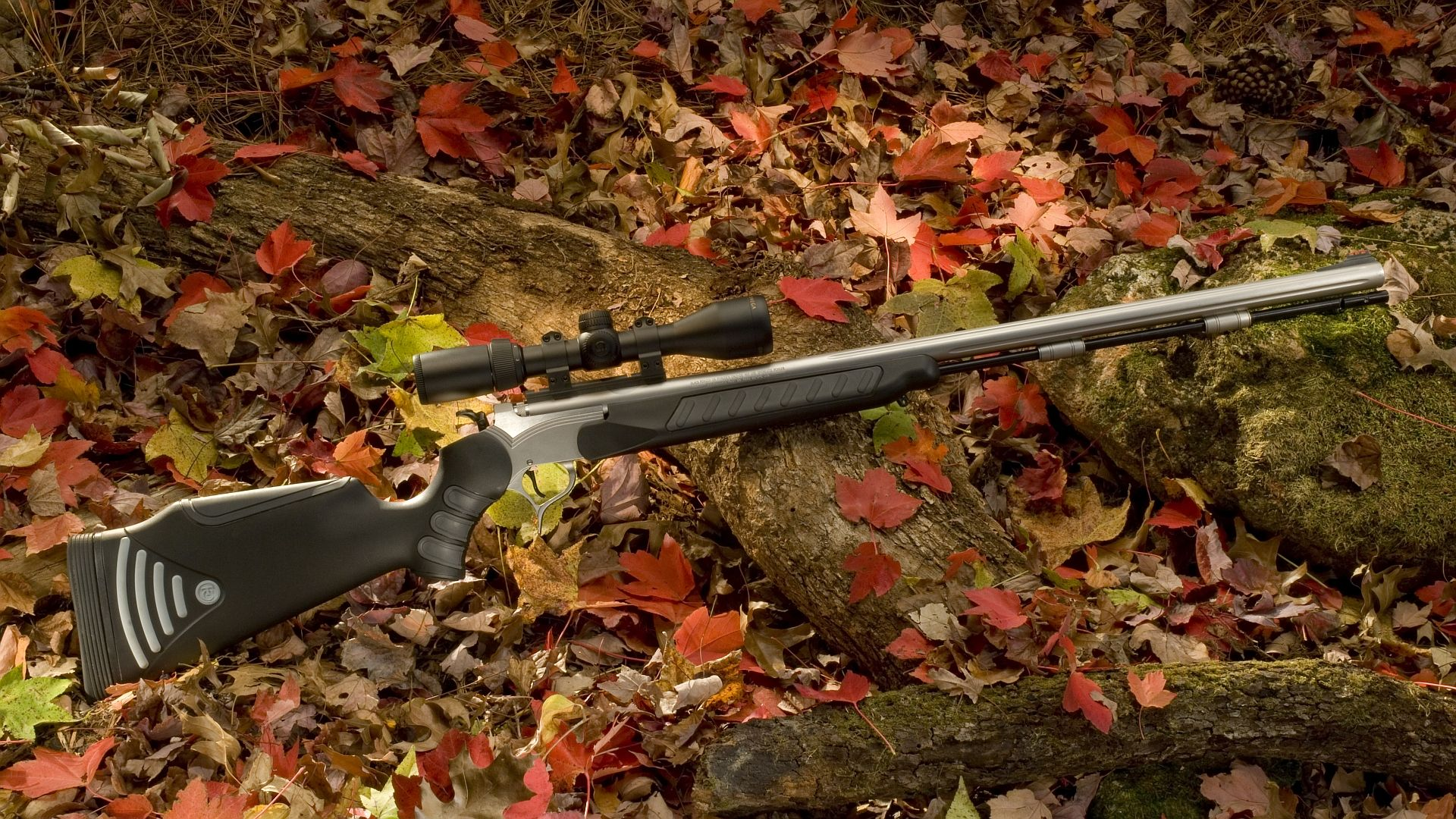 Hunting download free wallpaper image search