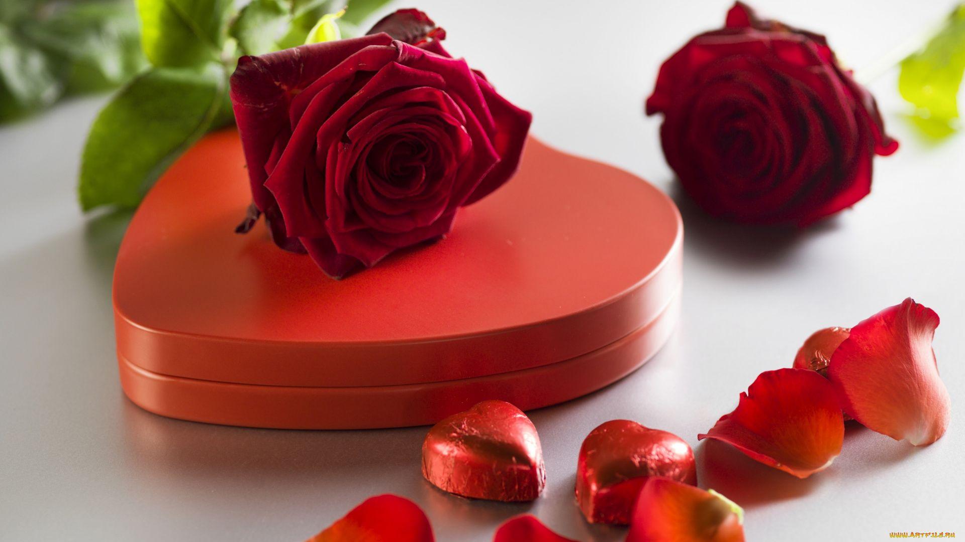Image Of Love jpg