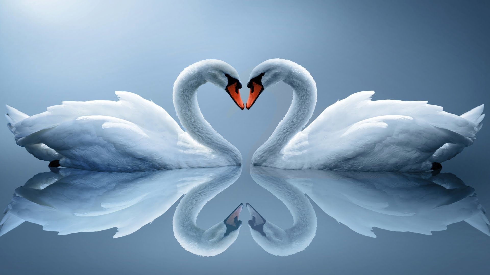 Image Of Love wallpaper for pc