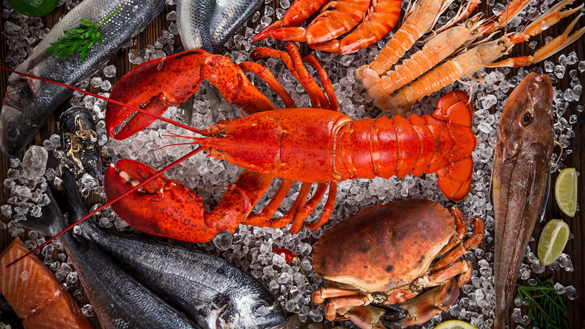 Lobster PC Wallpaper HD