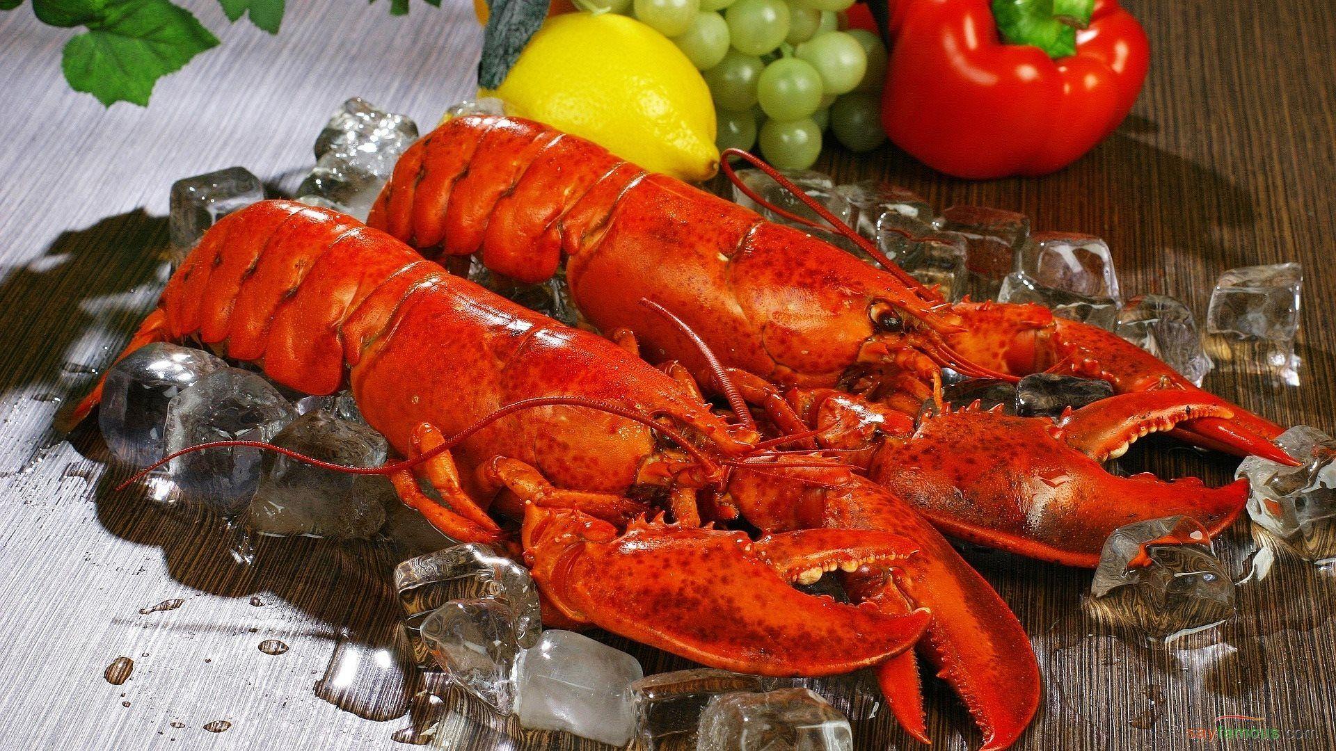 Lobster computer Wallpaper