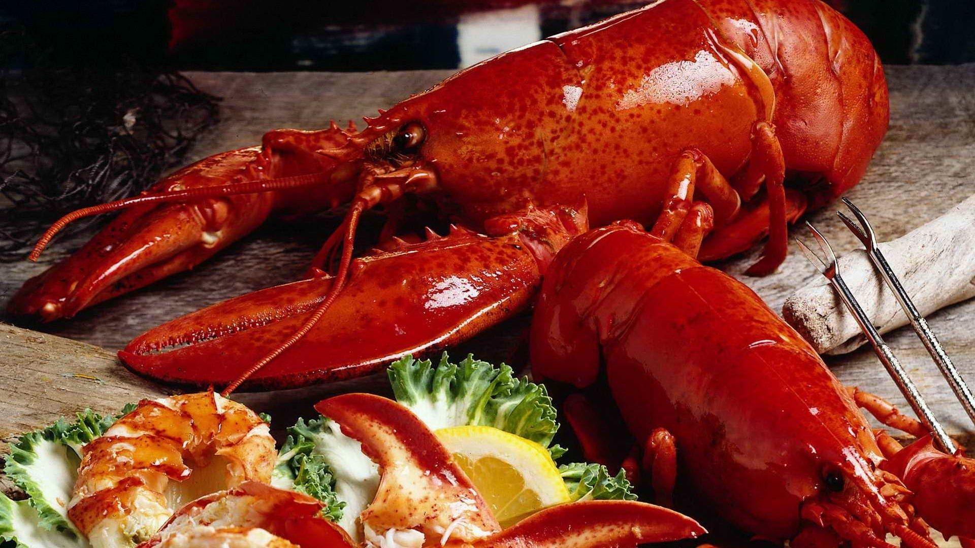 Lobster Free Desktop Wallpaper