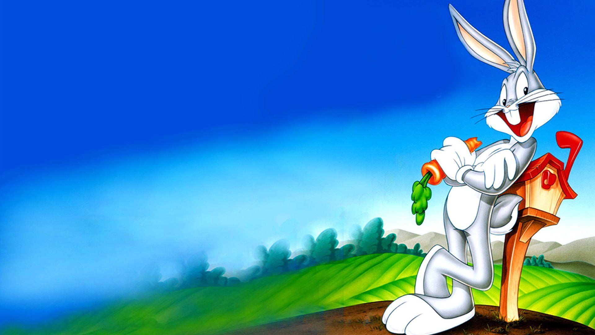 Looney Tunes Cool HD Wallpaper