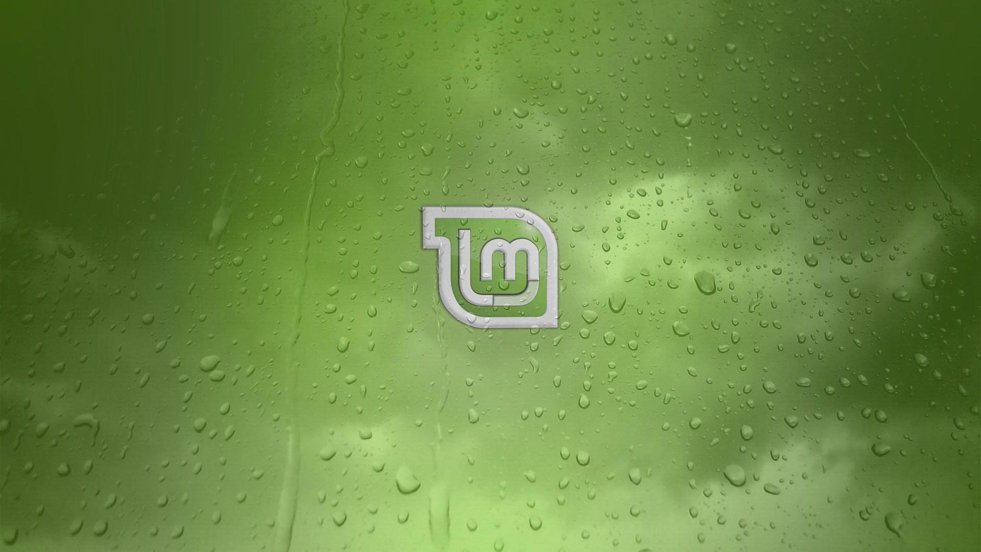 Mint Cool HD Wallpaper