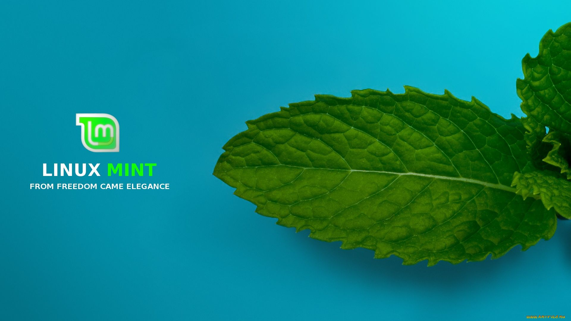 Mint Free Desktop Wallpaper