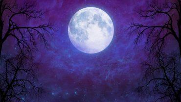 Moon full screen hd wallpaper