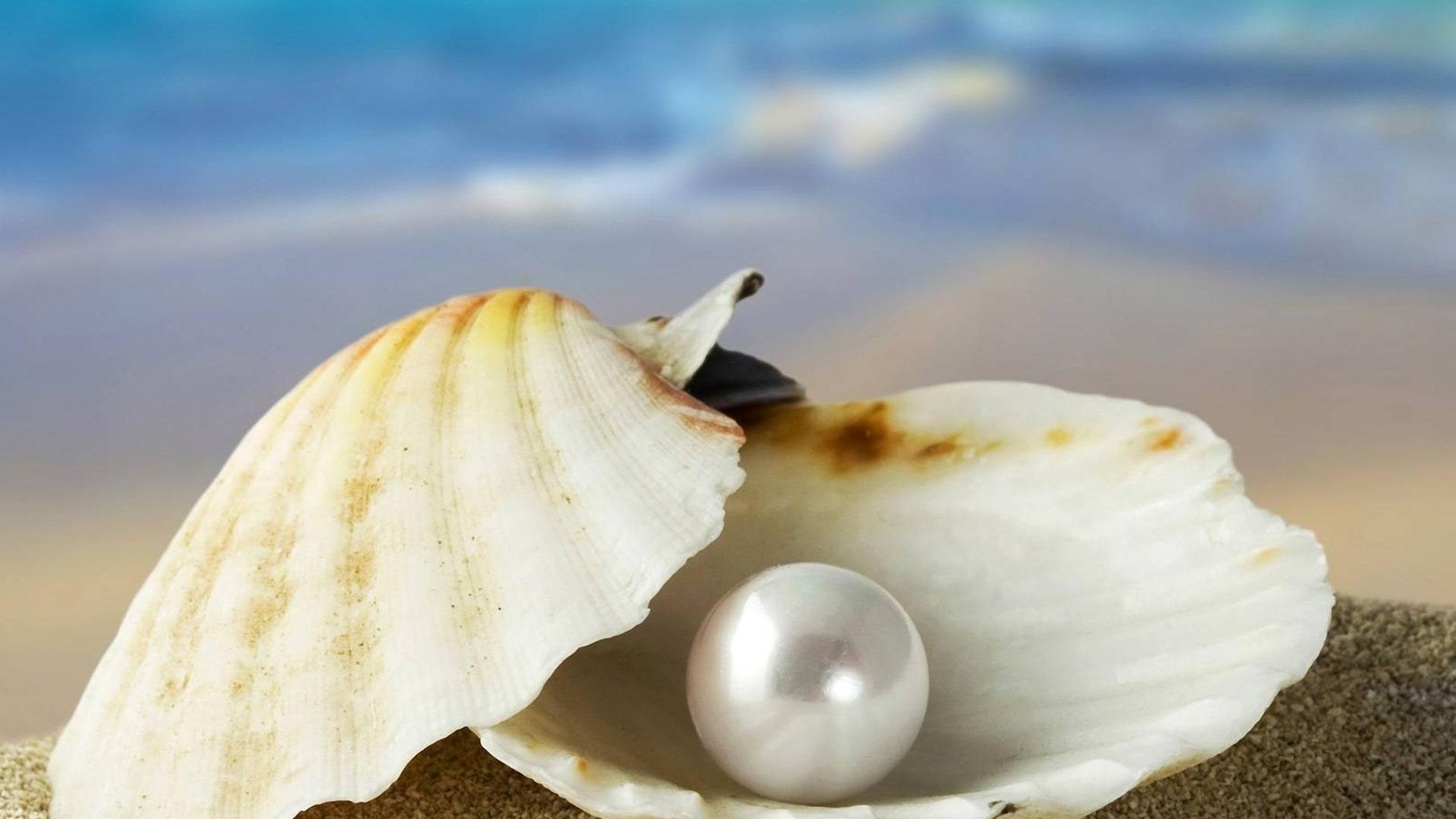 Pearl HD Wallpaper