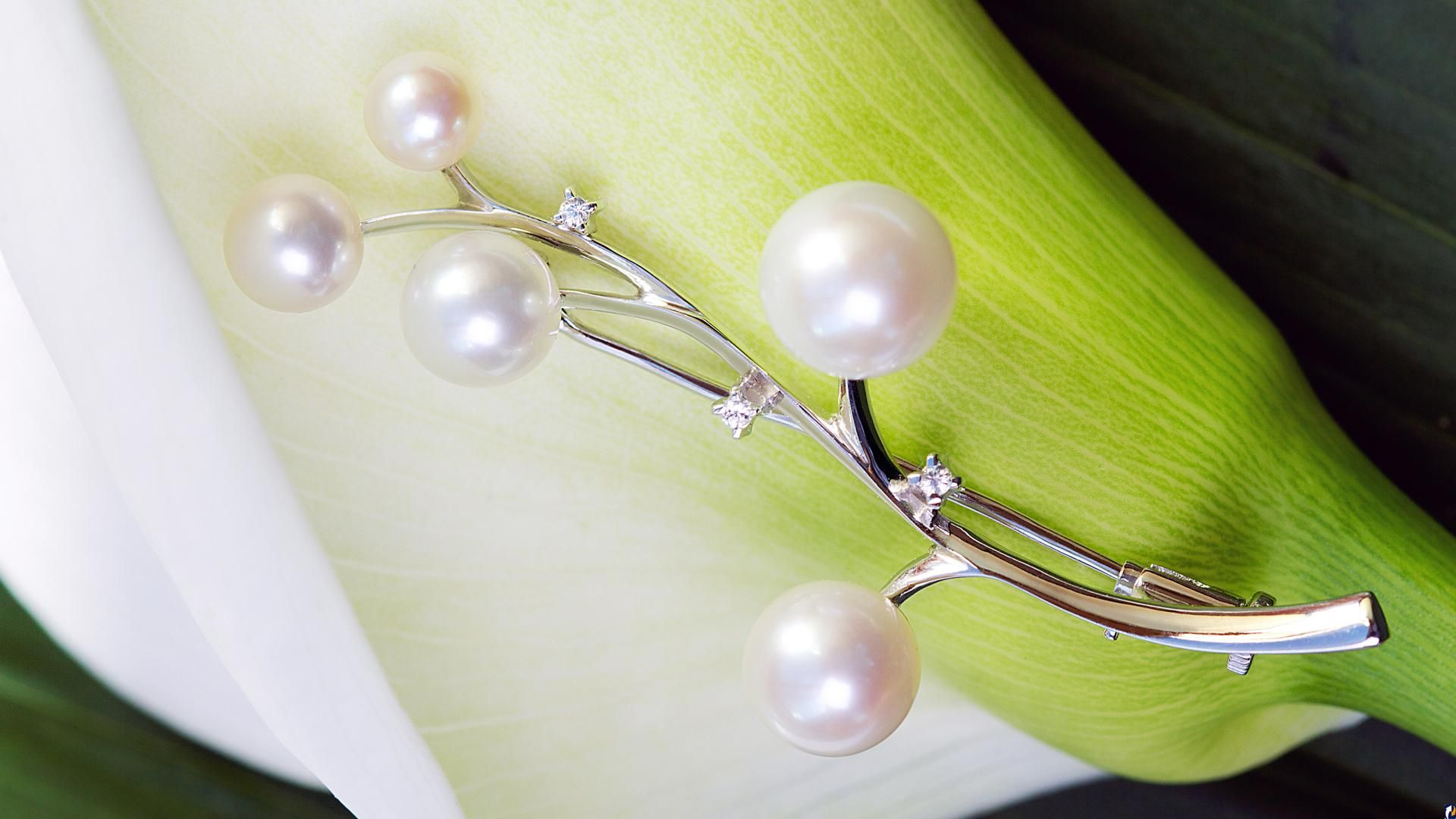 Pearl wallpaper picture hd