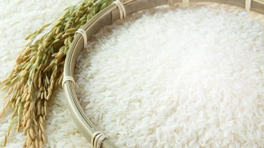 Rice full hd wallpaper download