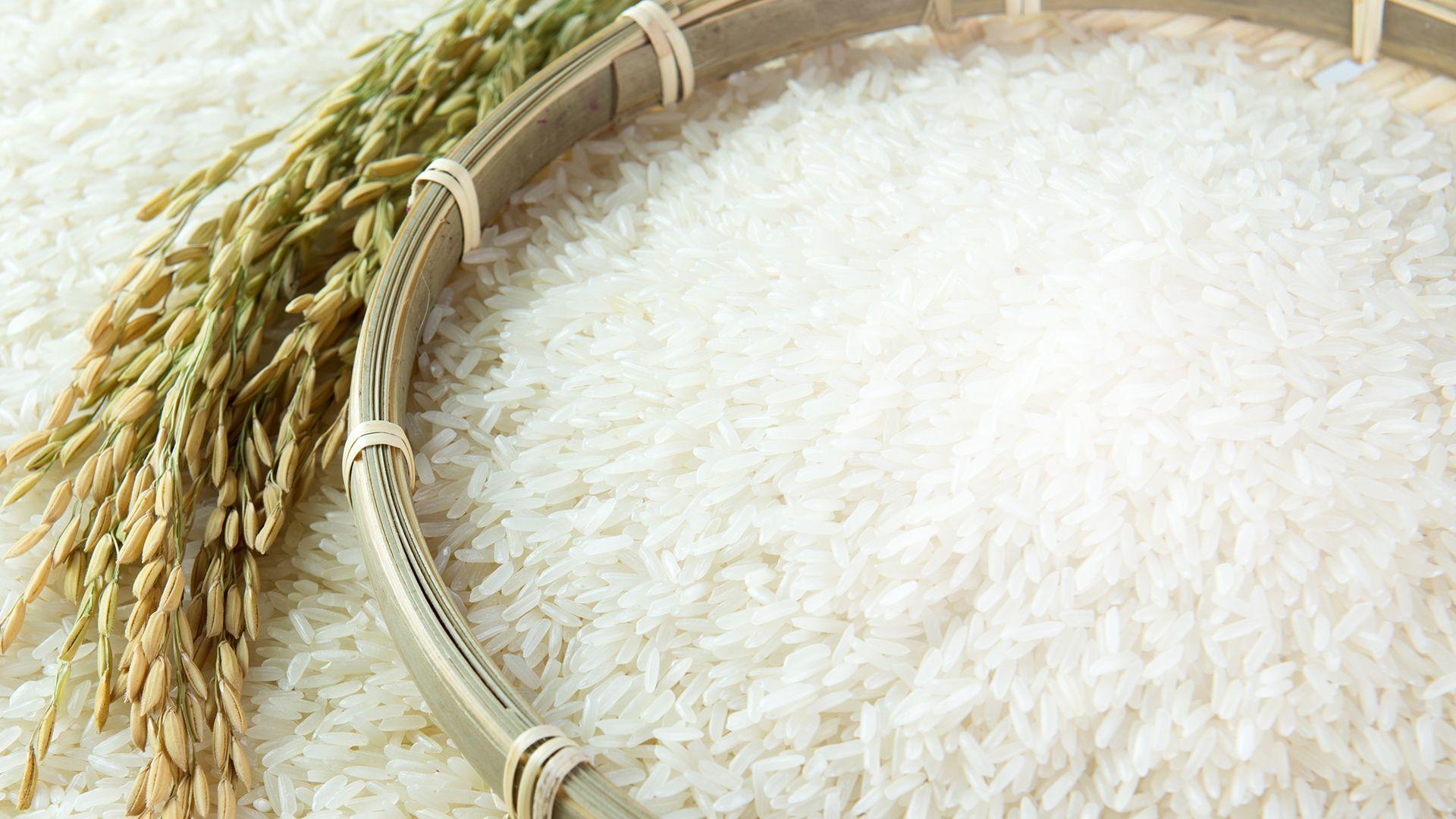 Rice full hd wallpaper download