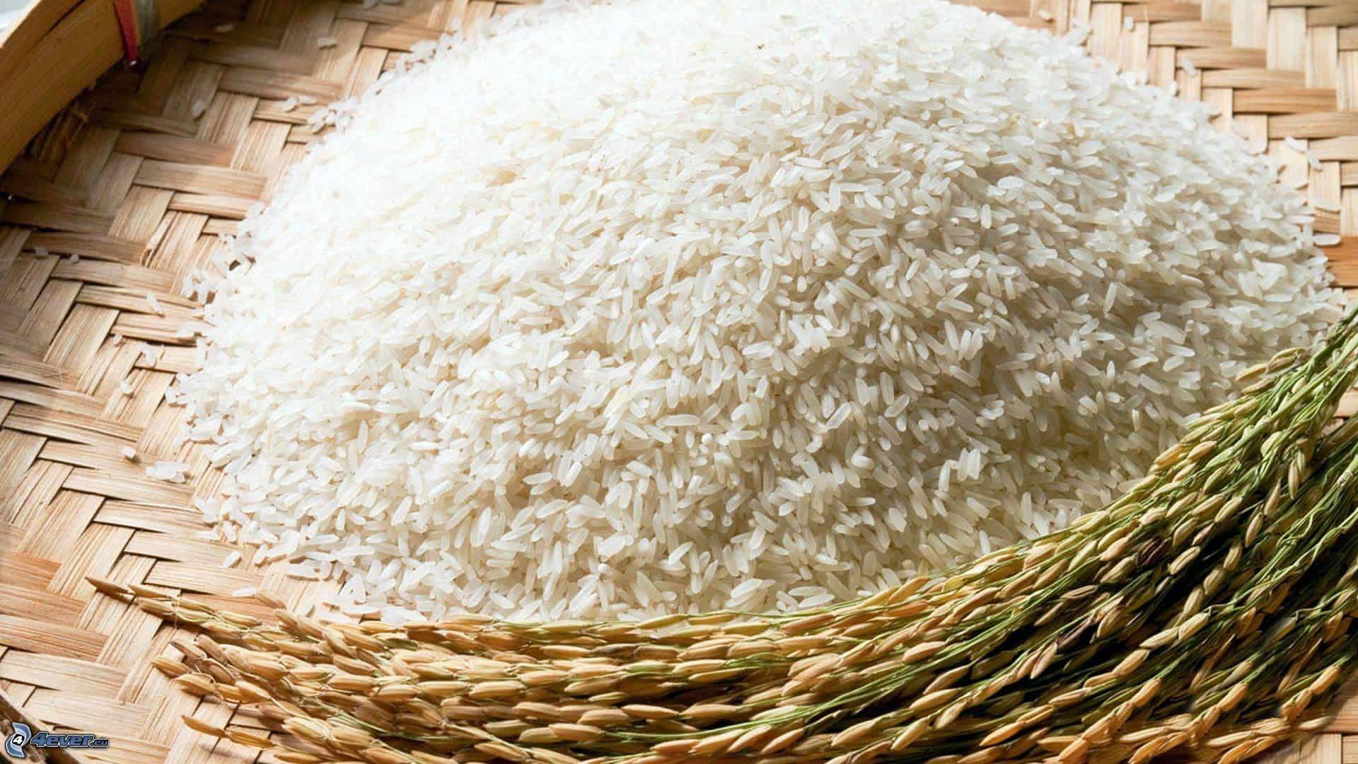 Rice laptop background wallpaper