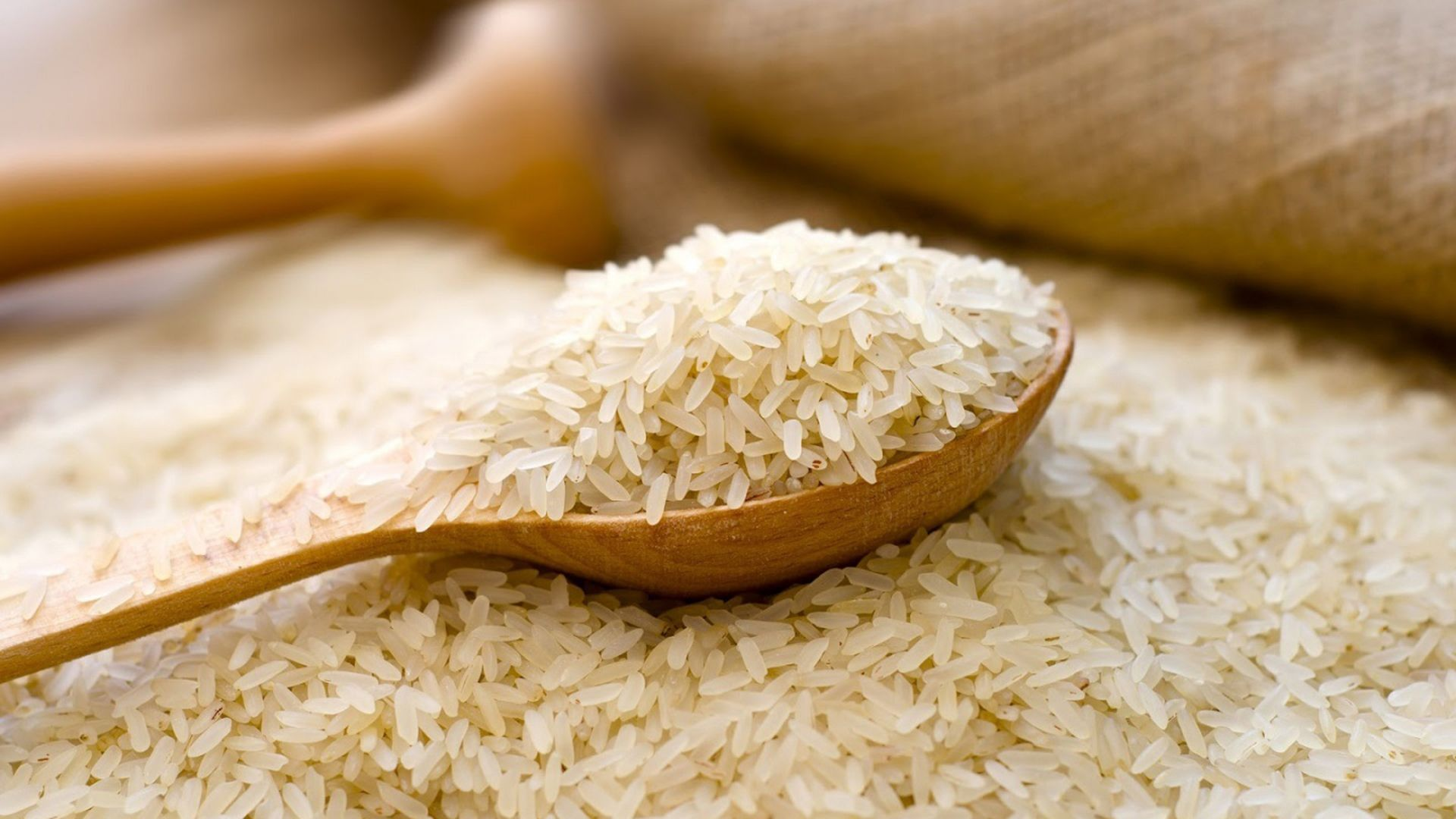 Rice picture free download
