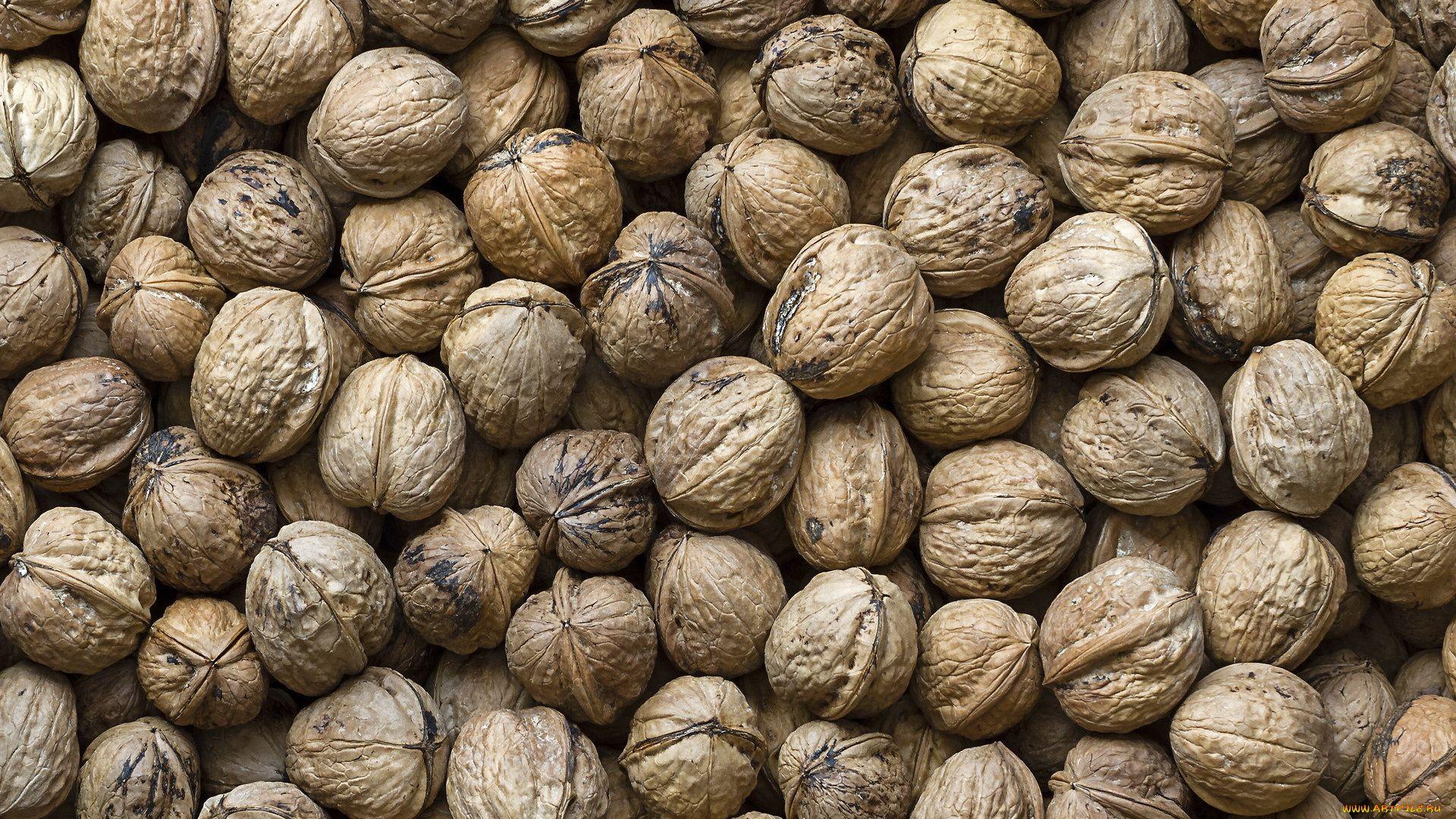 Walnut Download Wallpaper