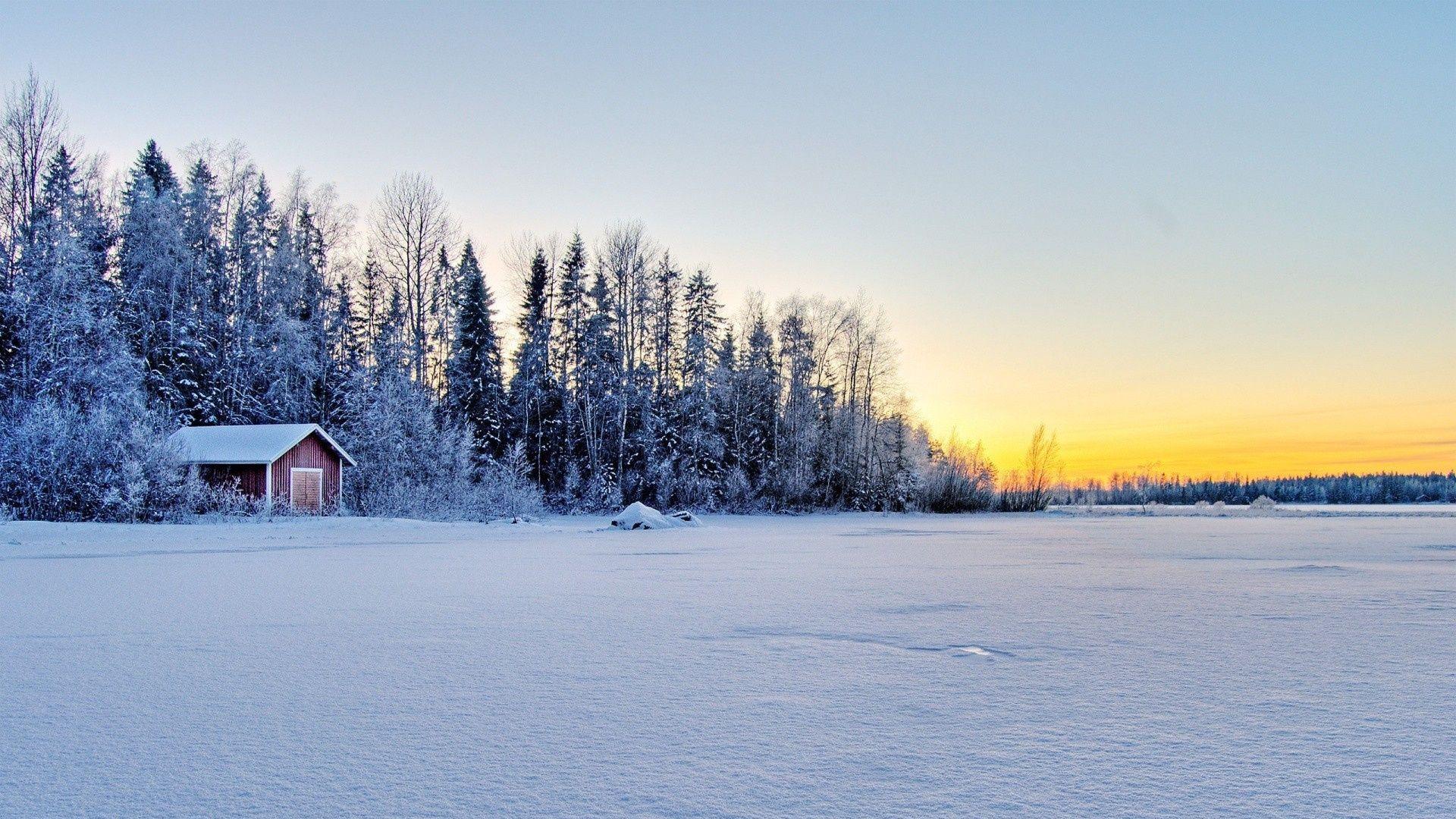 Winter Scene 1080p Wallpaper