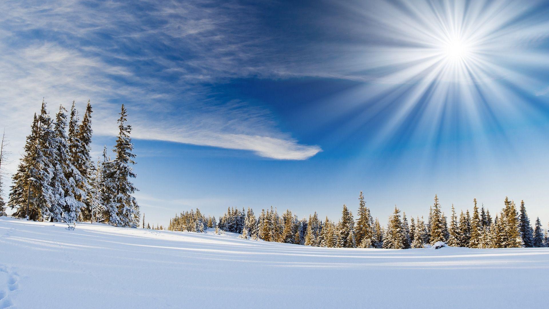 Winter Scene download wallpaper image