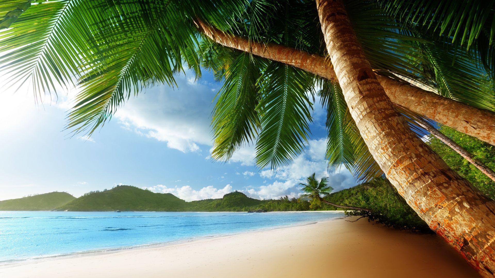 Aloha free download wallpaper