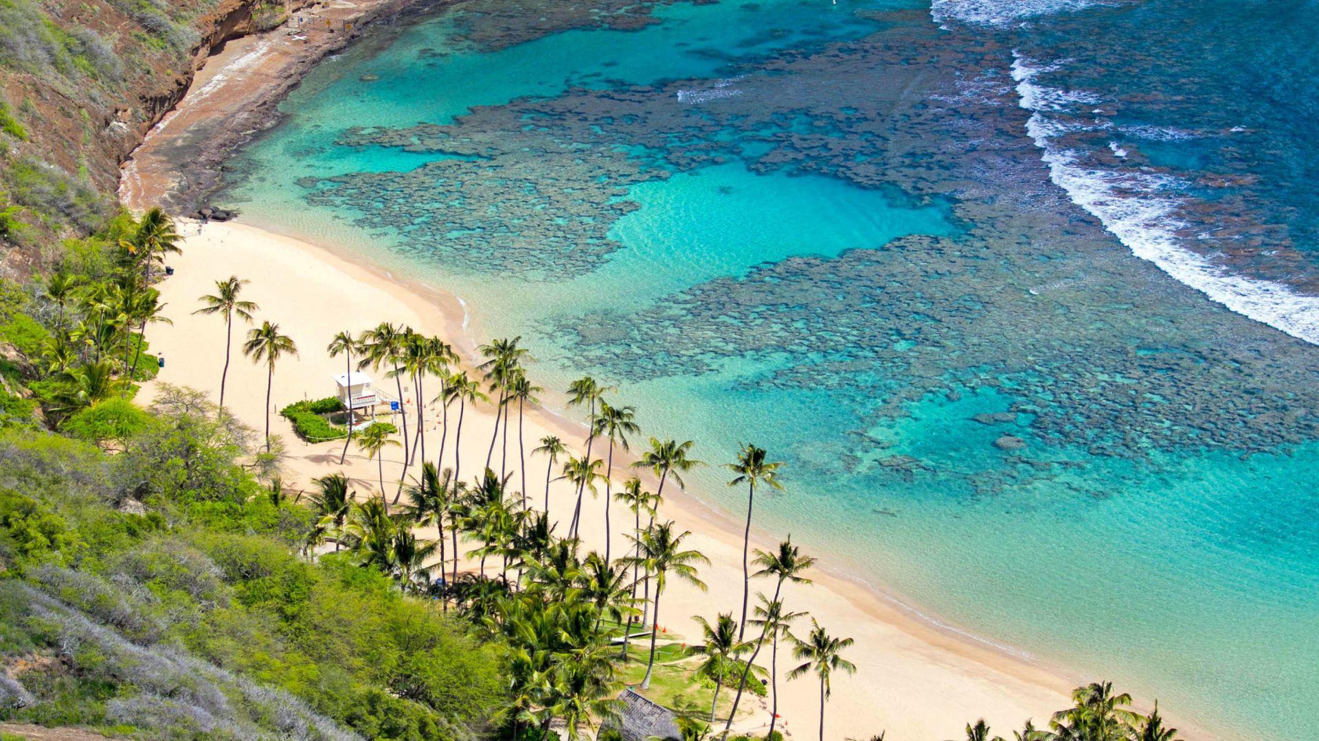 Aloha PC Wallpaper