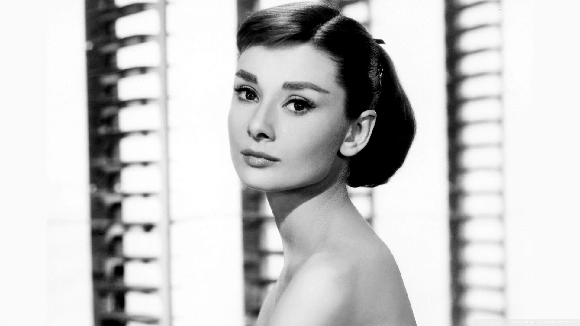 Audrey Hepburn wallpaper photo hd