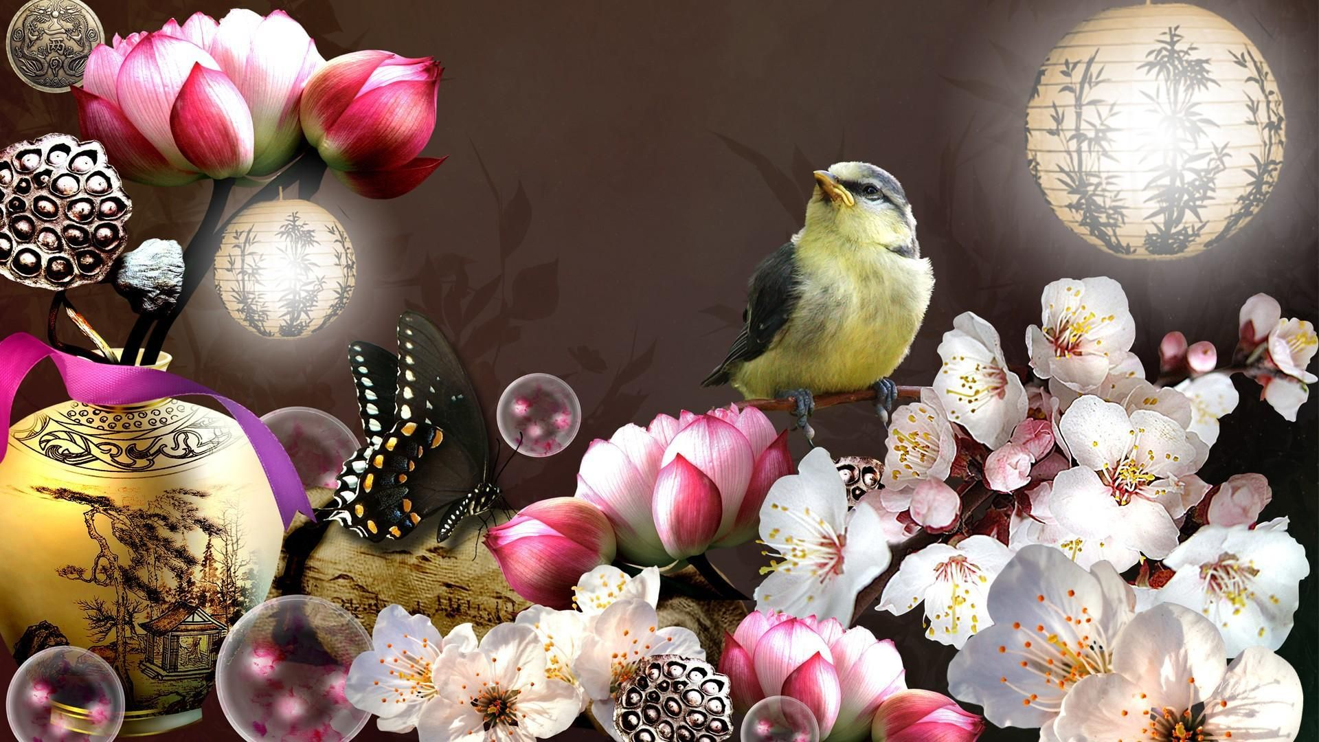 Bird And Butterfly 1920x1080 wallpaper