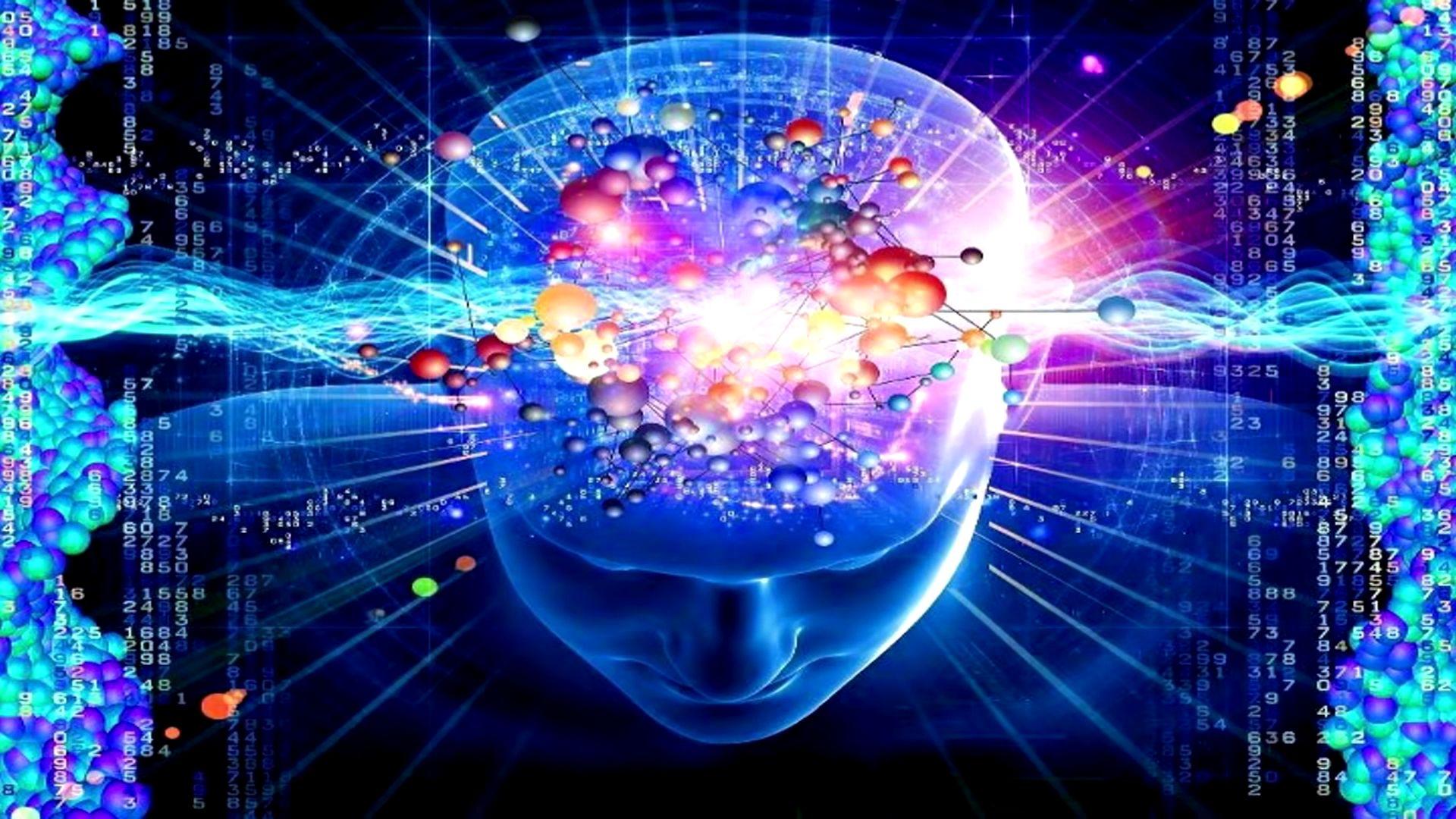 Brain full wallpaper