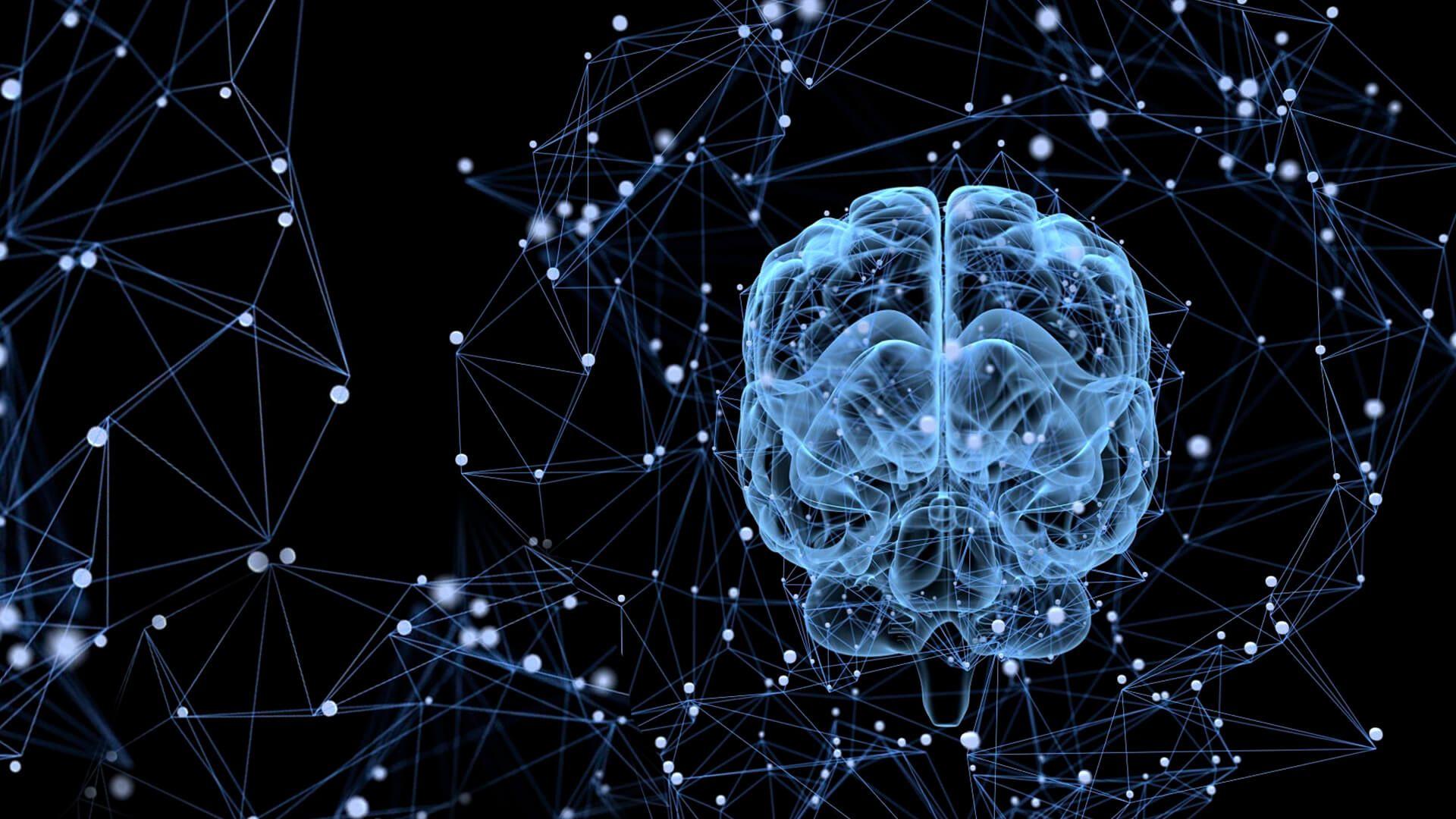 Brain HD Desktop Wallpaper