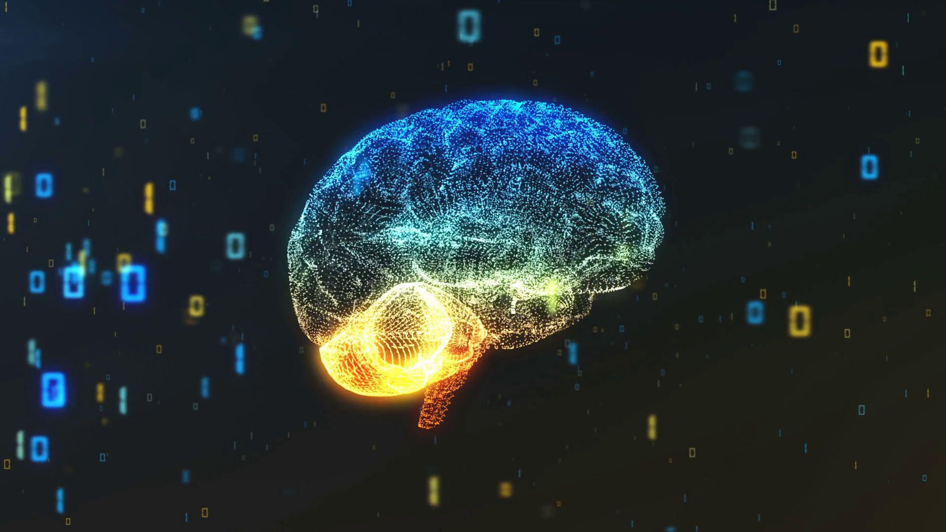 Brain wallpaper photo