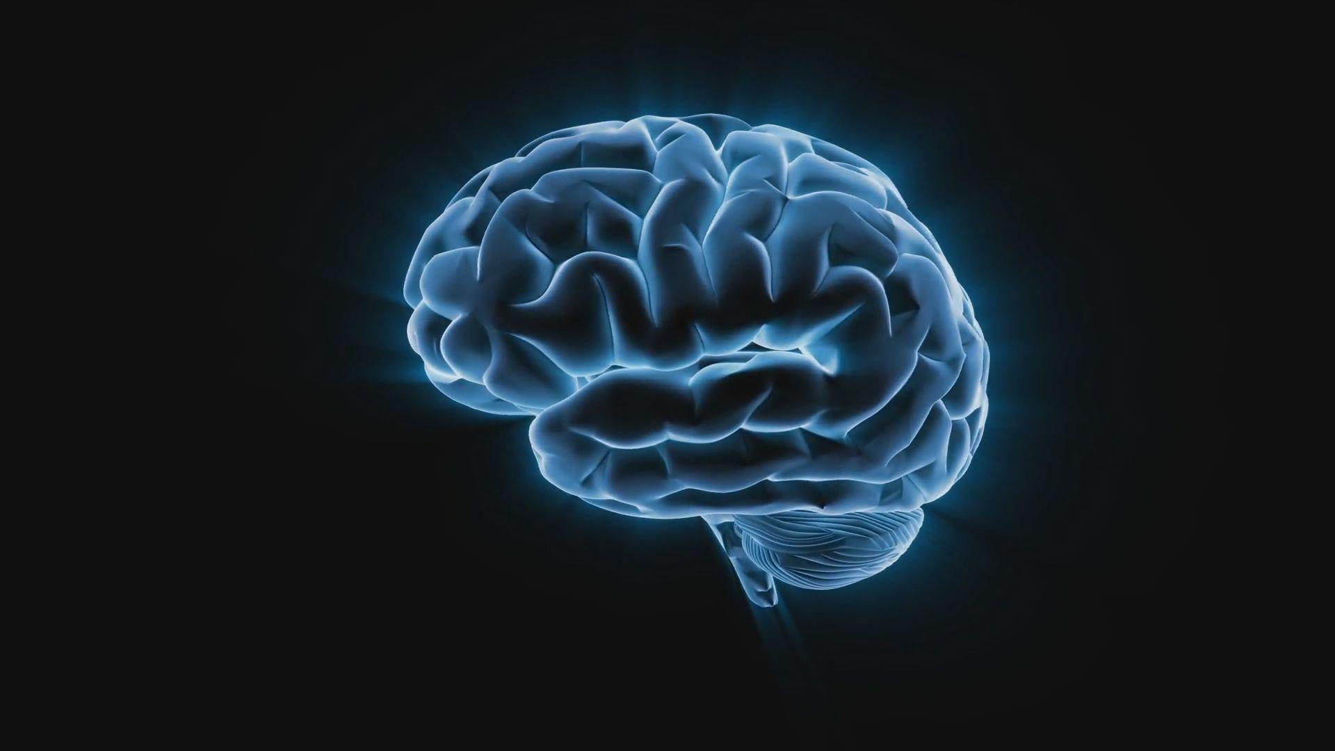 Brain Wallpaper Theme