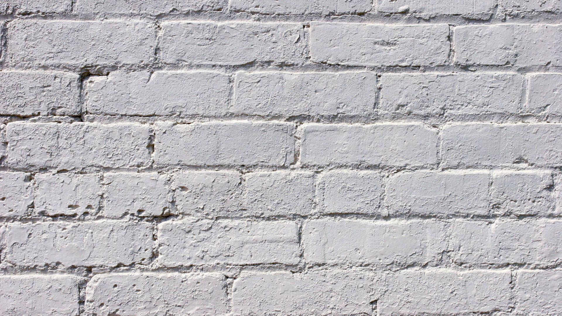 Brick Paper Backdrop wallpaper download