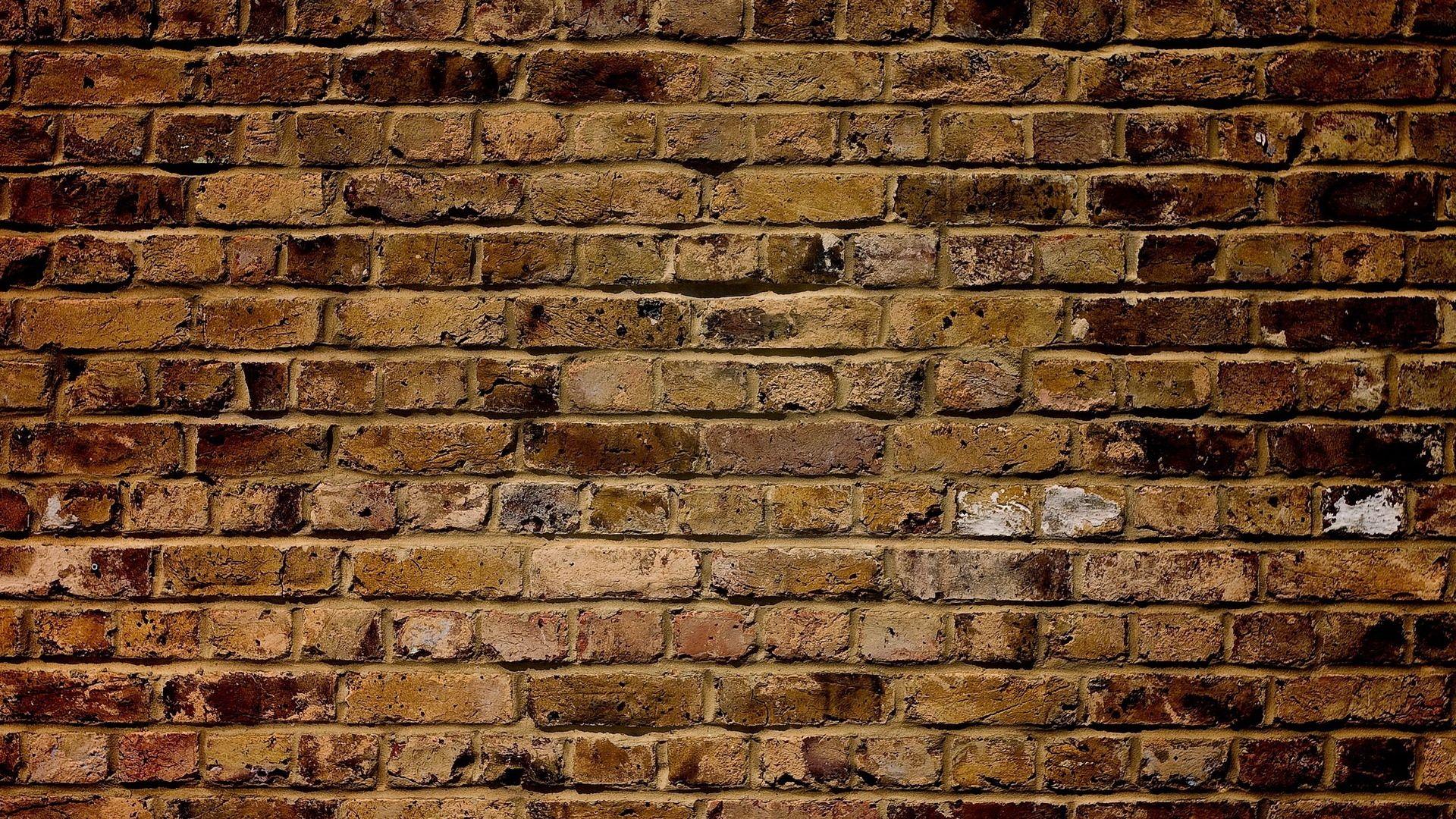 Brick Paper Backdrop new wallpaper