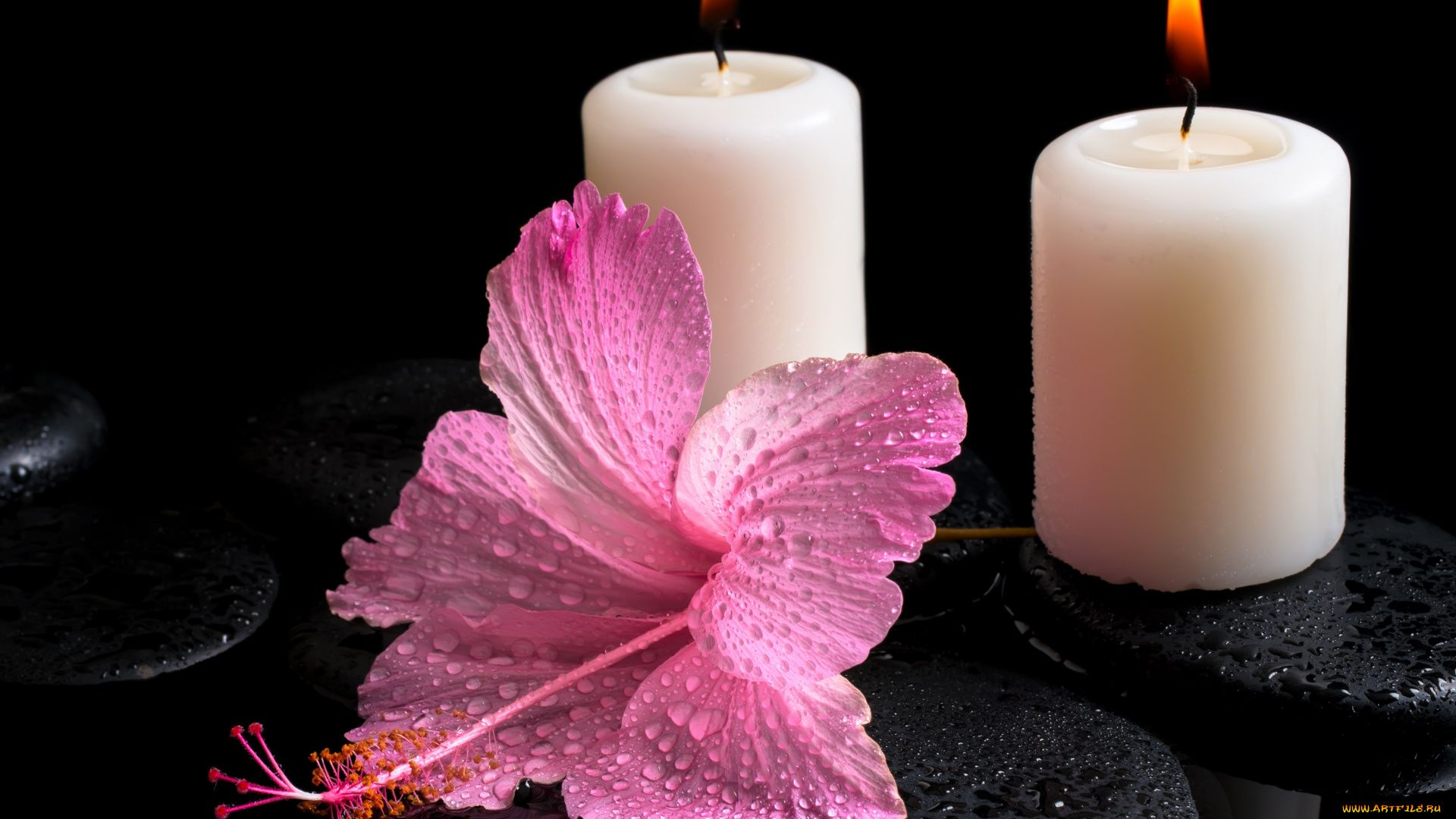 Candle desktop wallpaper download
