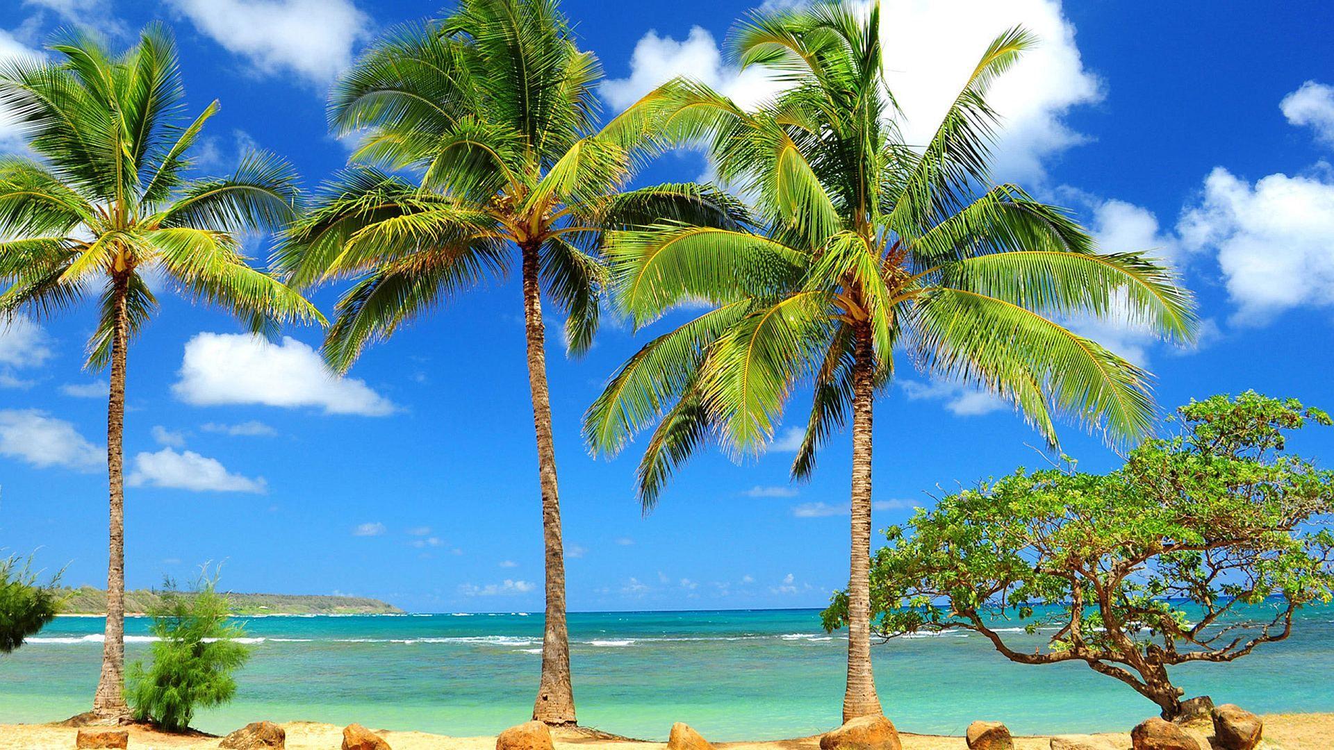 Caribbean desktop wallpaper