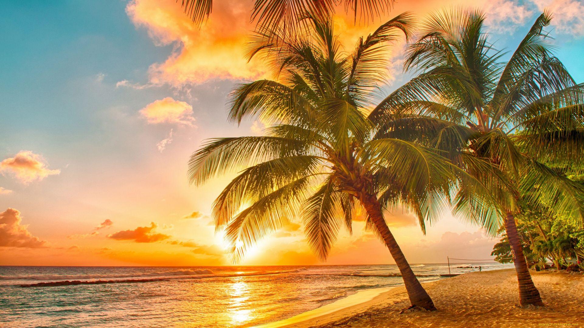 Caribbean Wallpaper Image