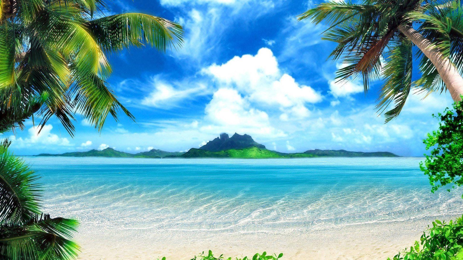 Caribbean Background Wallpaper