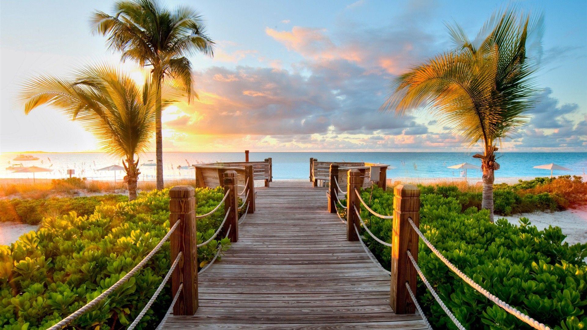 Caribbean Background
